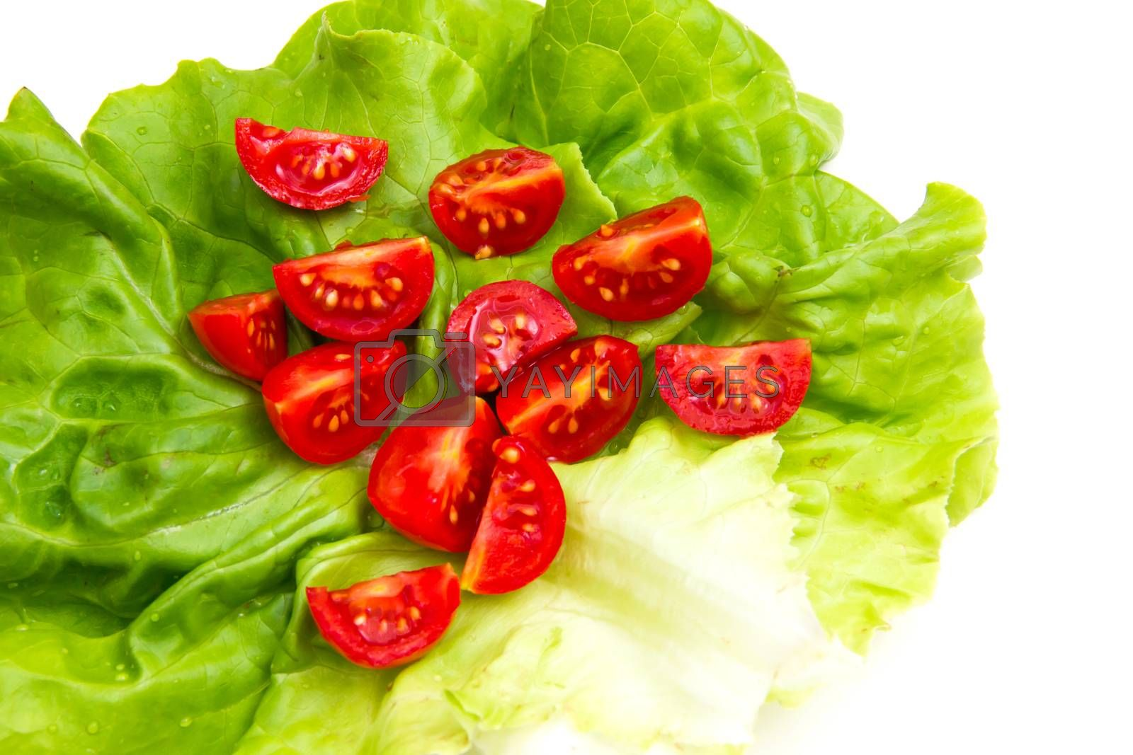Cherry tomatoes on lettuce on white background close up