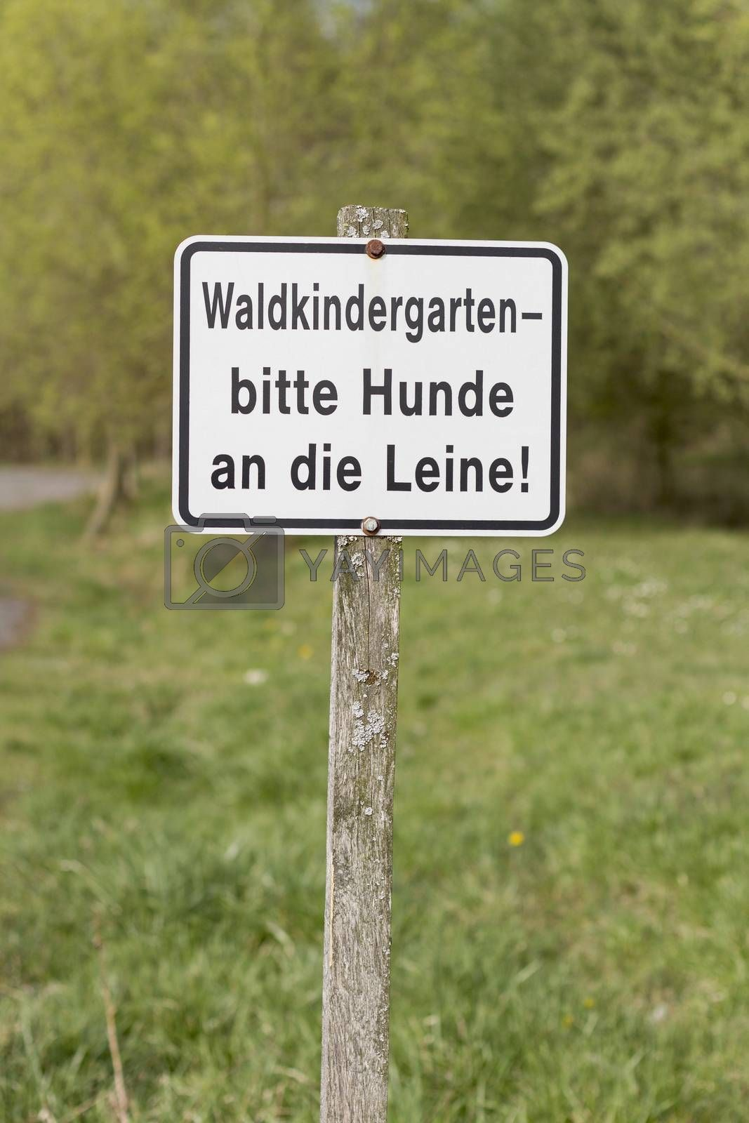 german sign on wooden pole. waldkindergarten, hunde bitte an die leine