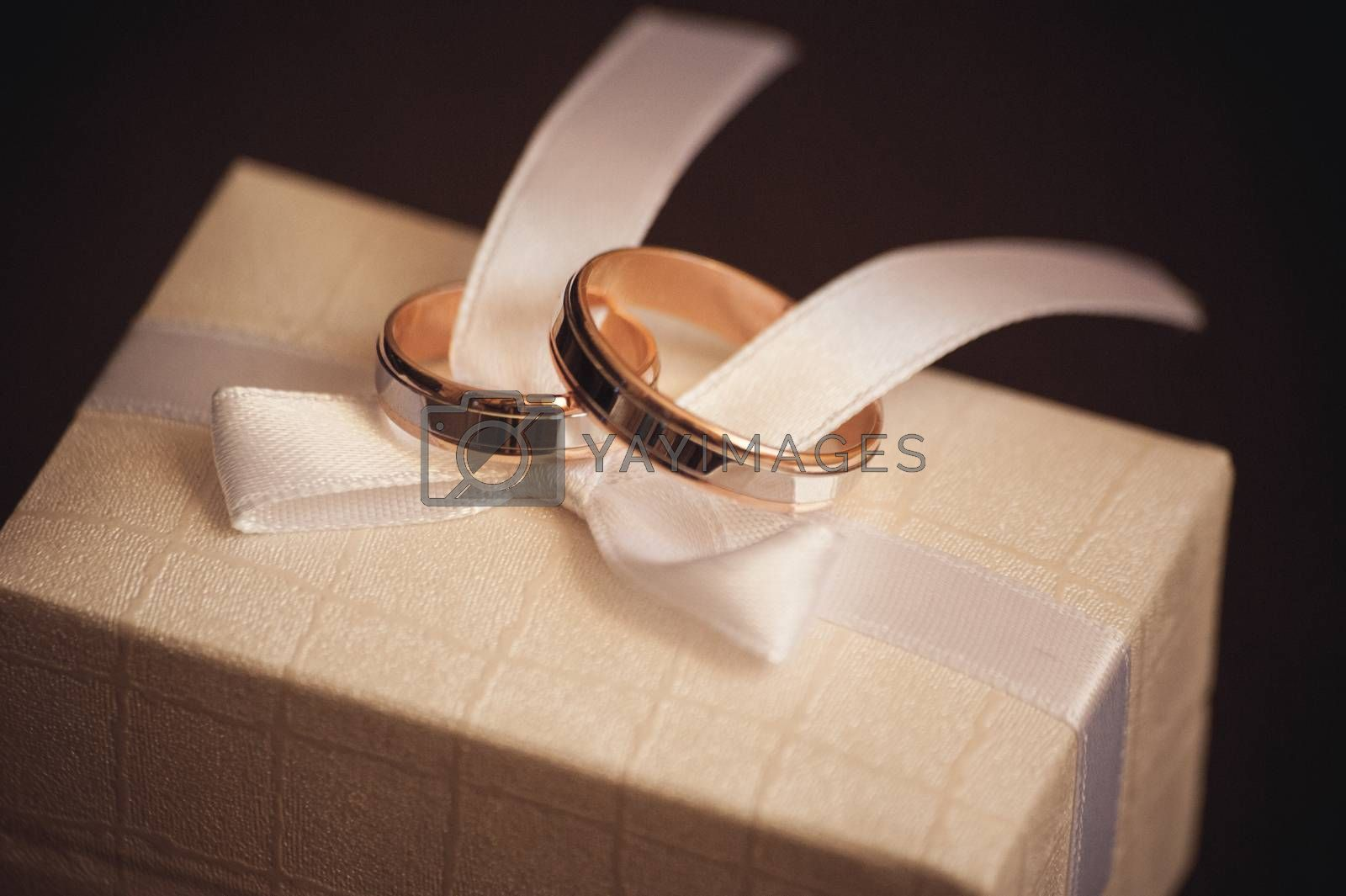 two wedding rings placed on white bow