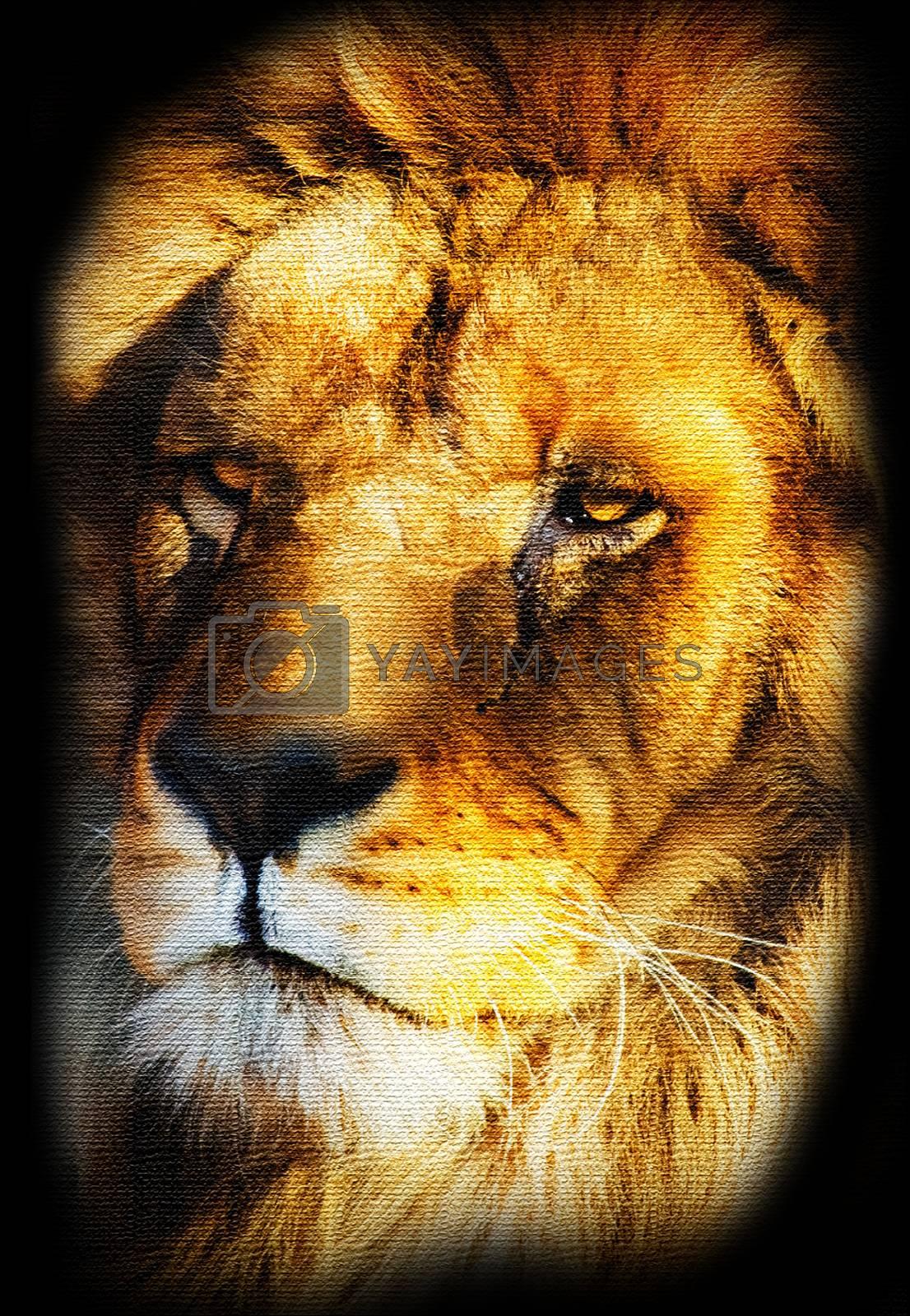 Illustration of Golden Lion Portrait Canvas Stylized