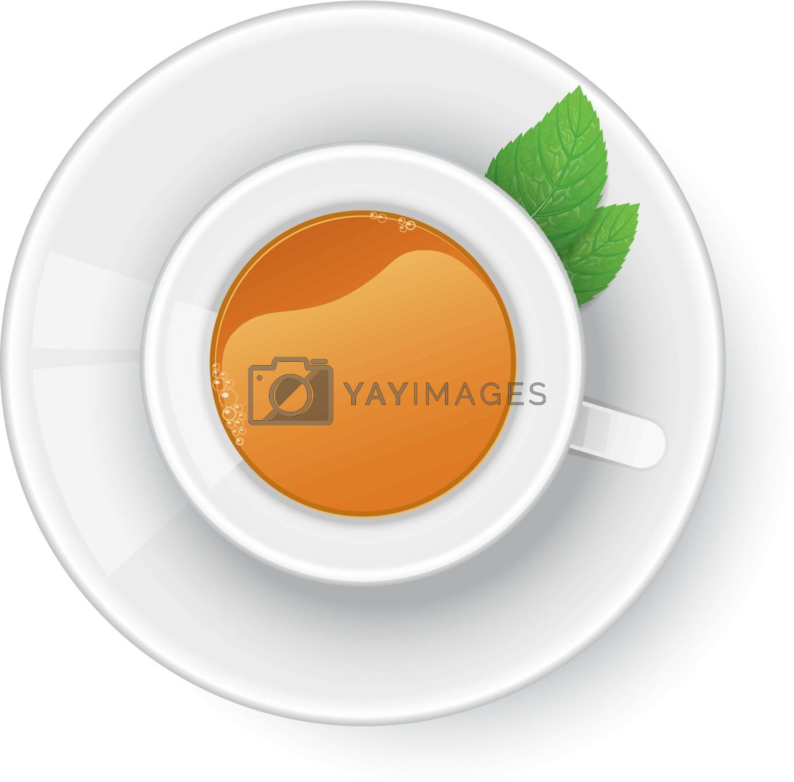 Vector illustration of Cup of tea with mint
