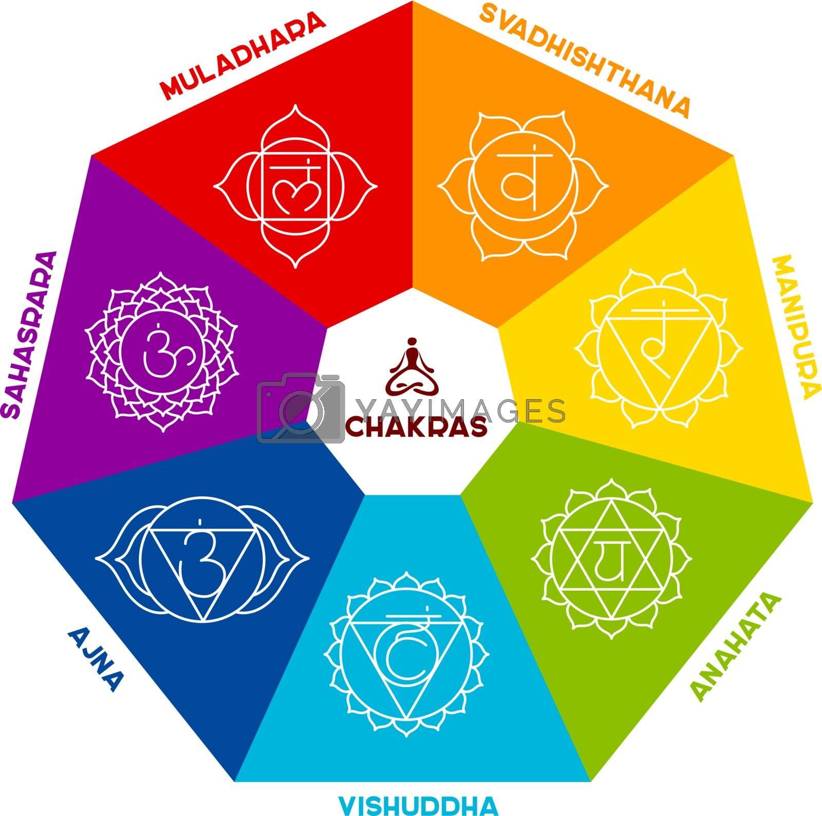 Vector illustration of Color chakra scheme on white background