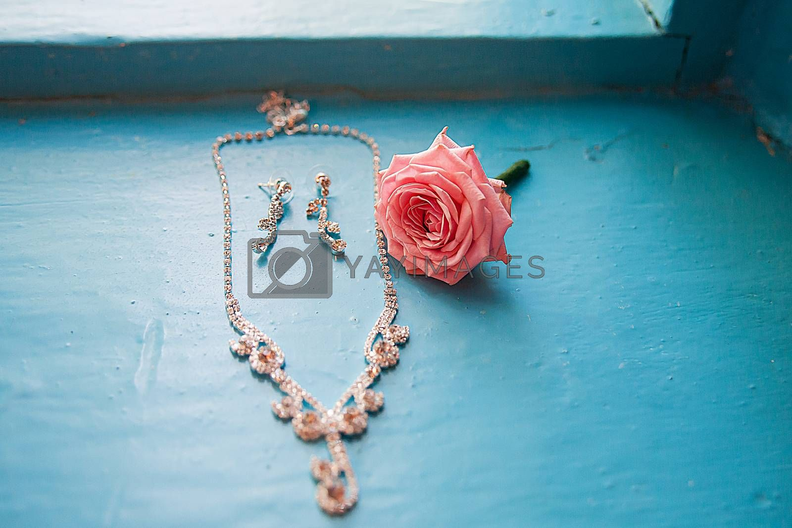 Royalty free image of elegant rose with necklace and earrings on a blue by sfinks
