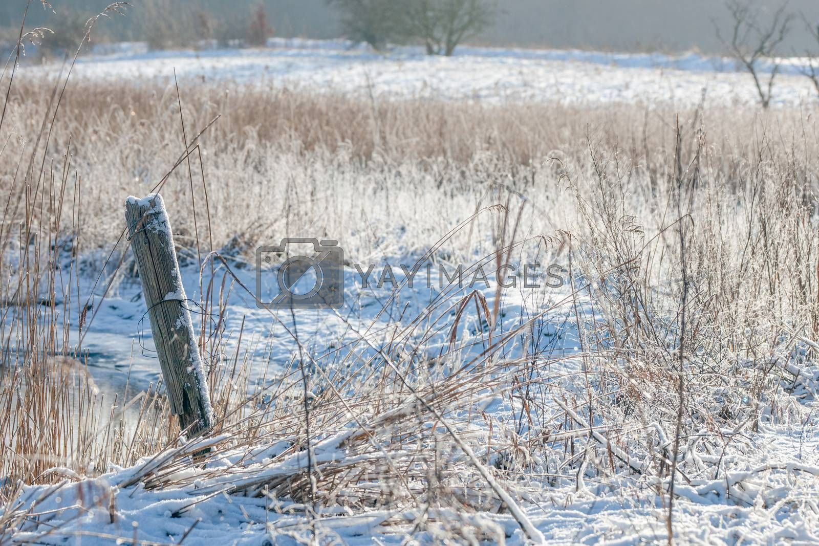 Winter landscape at a countryside by Sportactive