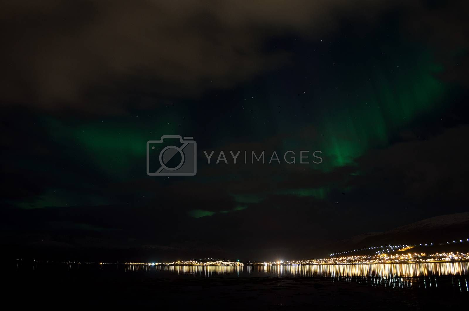 aurora borealis, northern lights over snowy mountain, reflective fjord water and whale island in northern norway in late autumn
