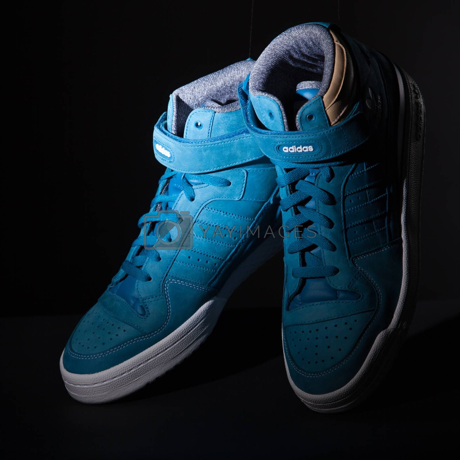 Ukraine, Kiev - FEBRUARY 2, 2015: Adidas origibal. Picture of a pair of blue trainers over a black background