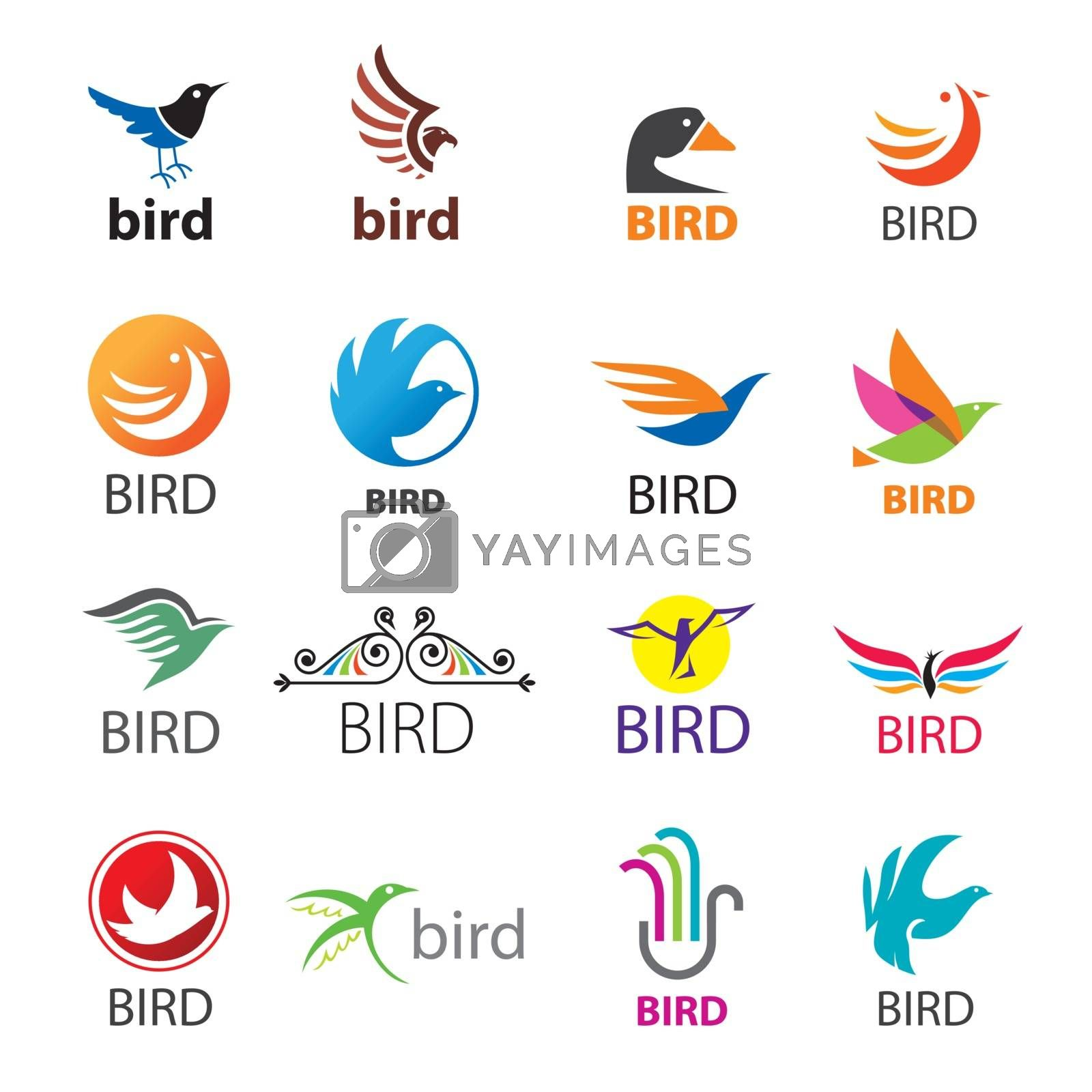 big set of vector logos birds by Butenkov