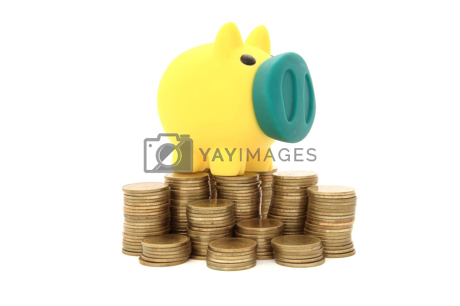 Pig money box/piggy bank with coins