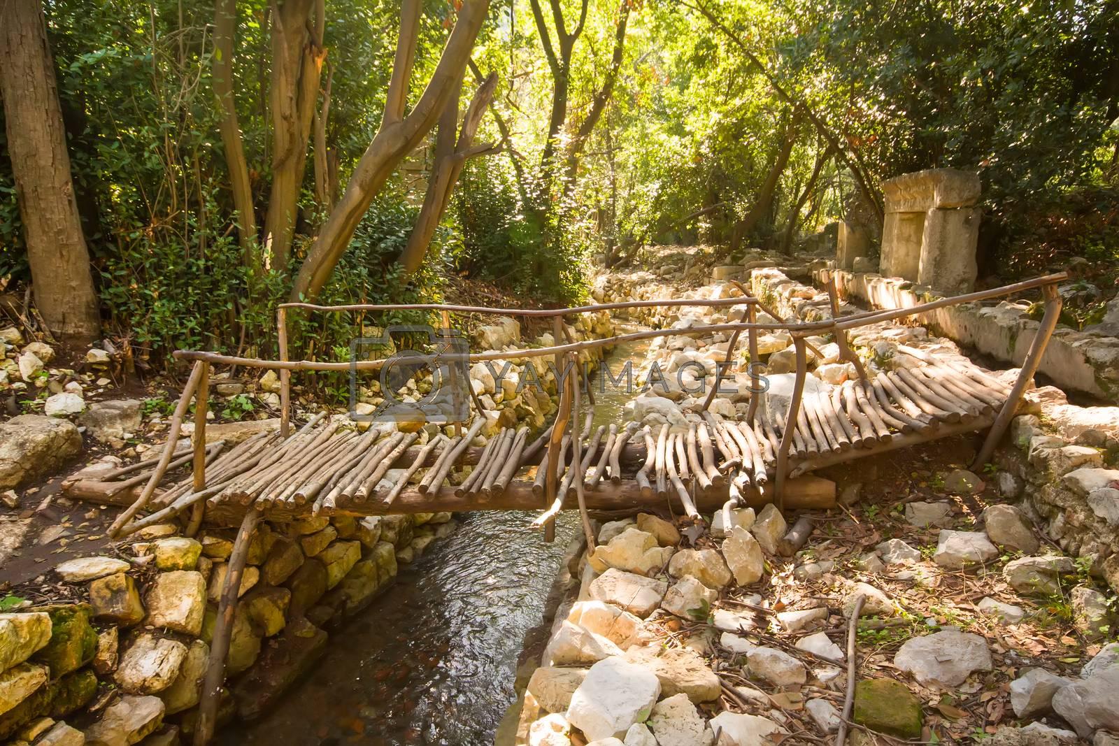 Turkey Olimpos bridge through a stream