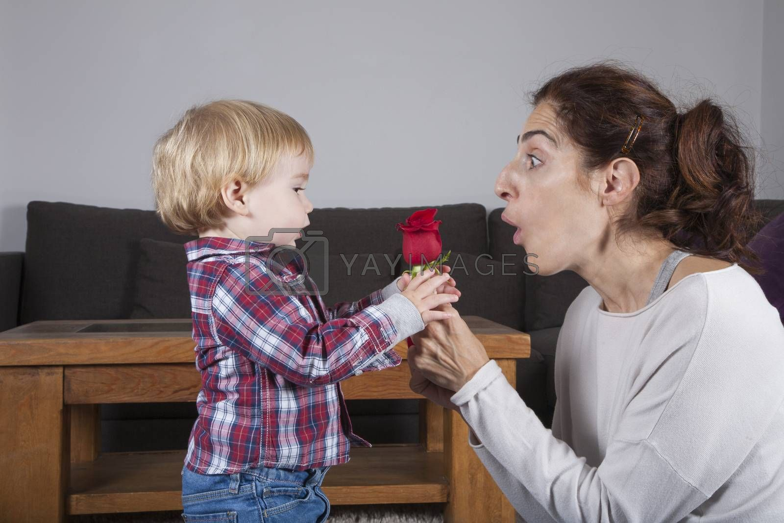 eighteen month aged blonde baby with brunette woman mother gift rose flower indoor