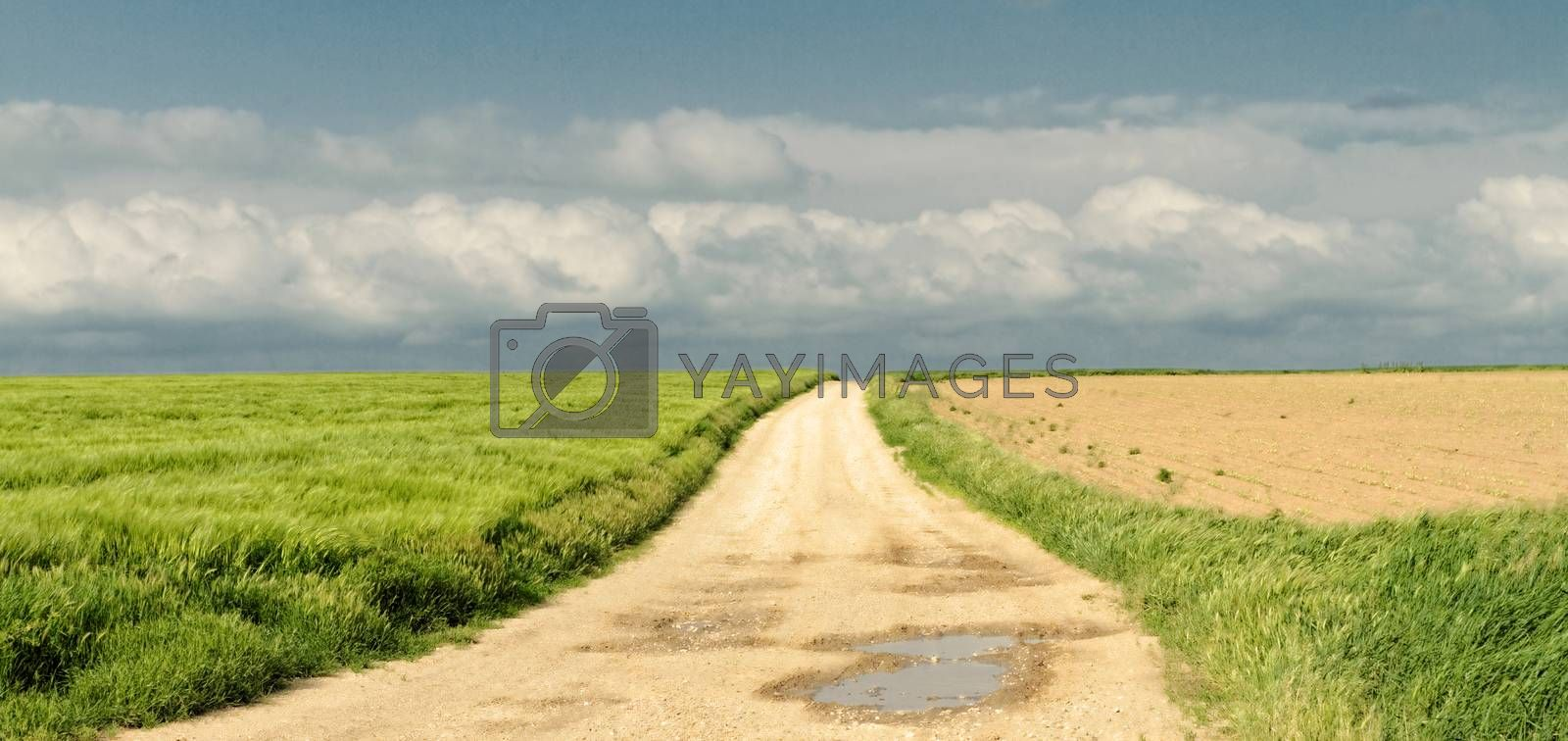 Beautiful landscape of a road under the blue sky