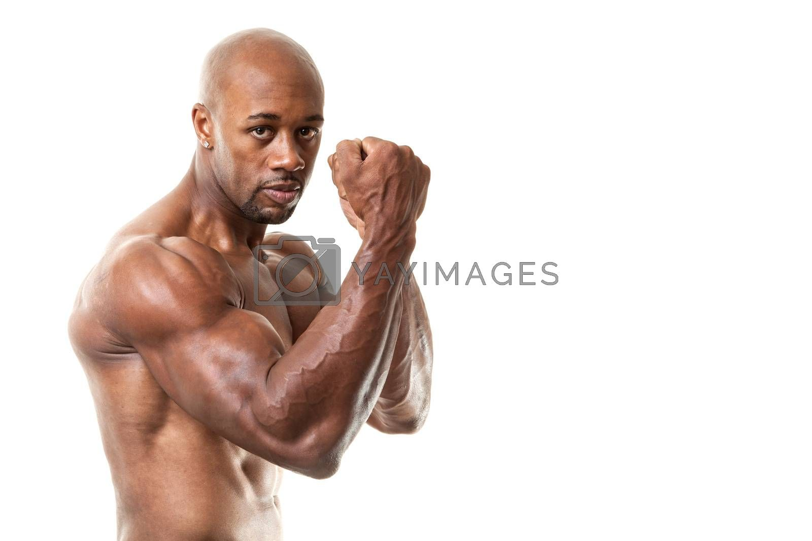 Ripped and muscular martial artist holding his fists up isolated over a white background. Great boxing or fitness concept. Shallow depth of field.