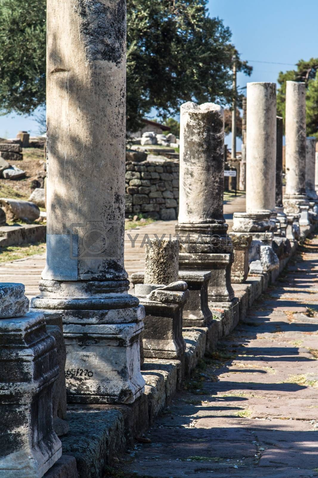 Royalty free image of Ancient Street with Ruins by niglaynike
