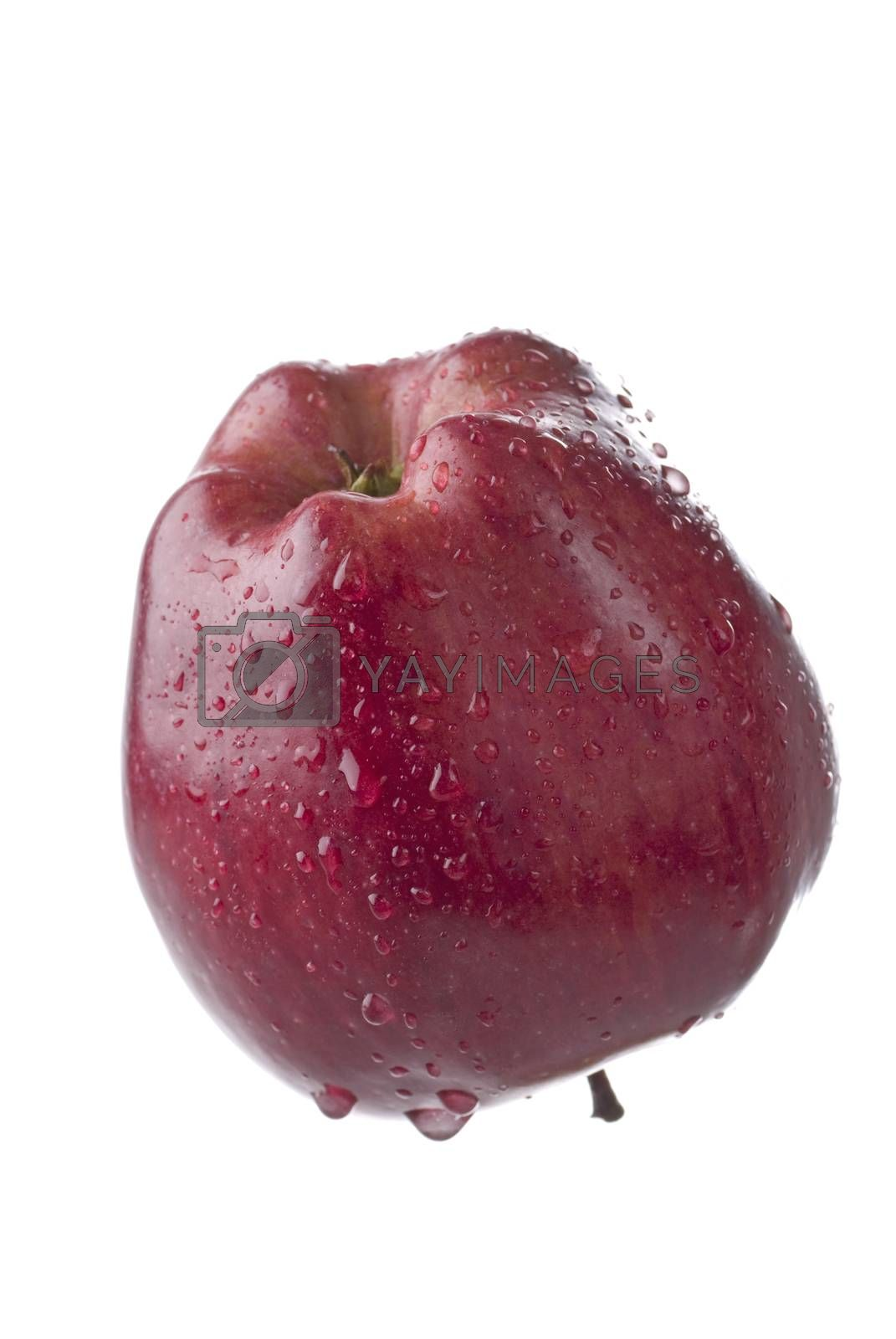 Royalty free image of Red Apple by ockra
