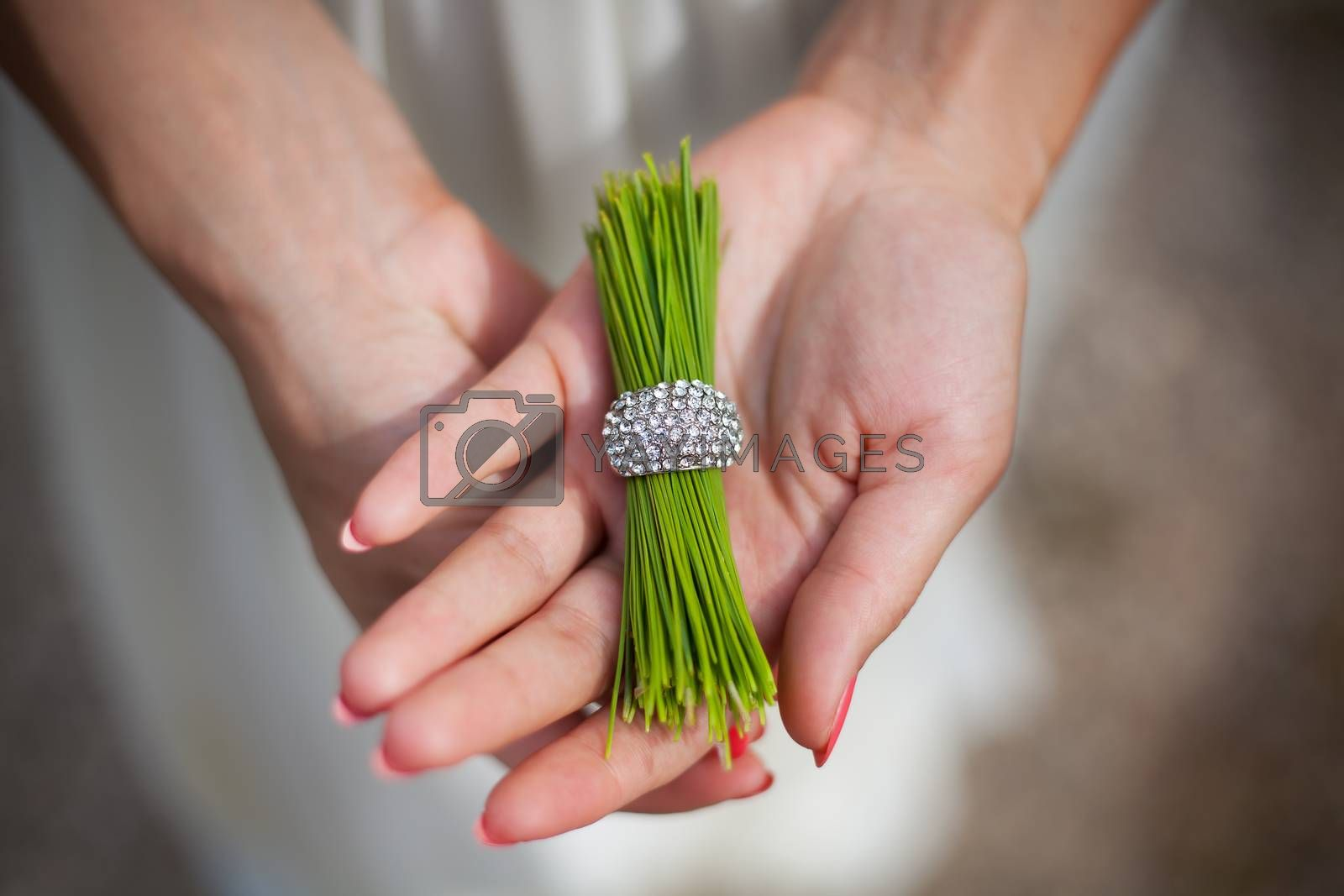 Royalty free image of pine needles with a ring in the hands of girl by sfinks