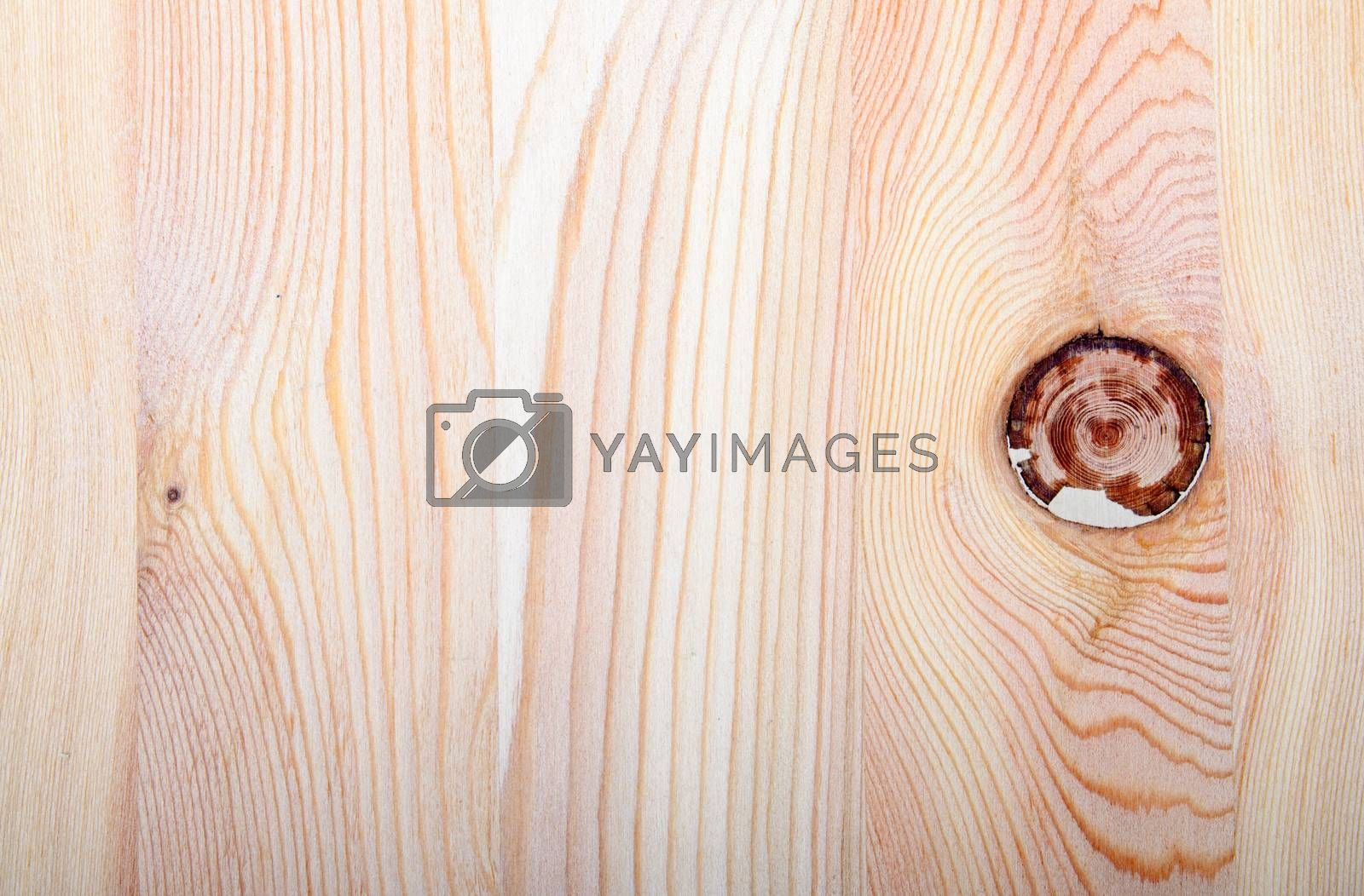 An image of part of wooden timber
