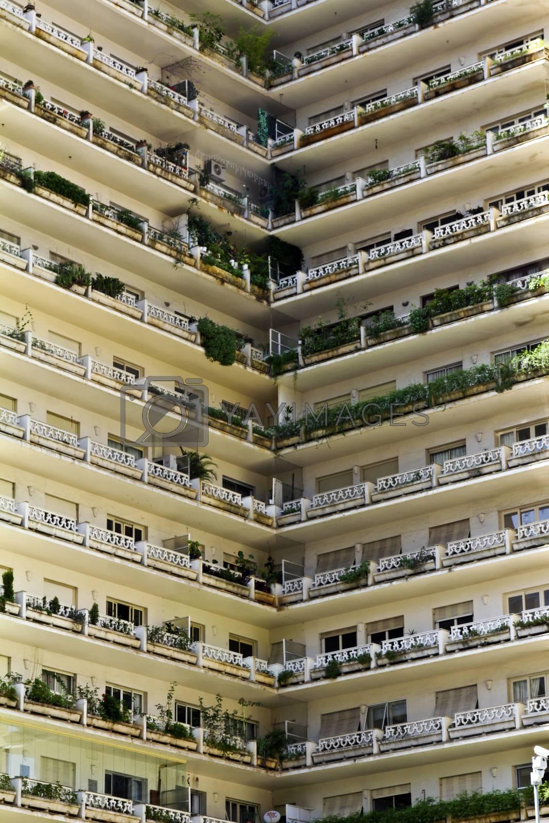 Modern building with color green facade