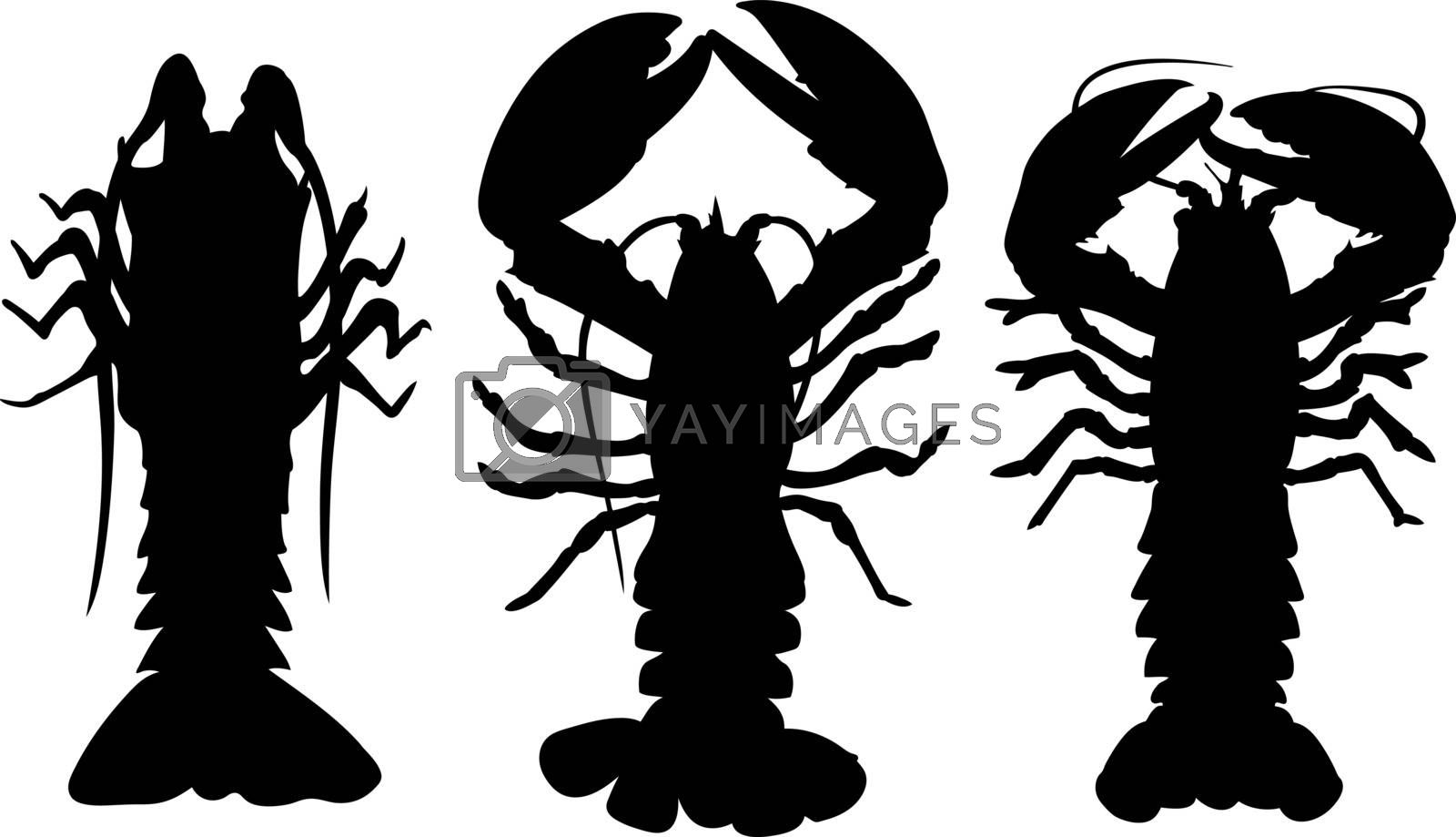 set of different lobsters