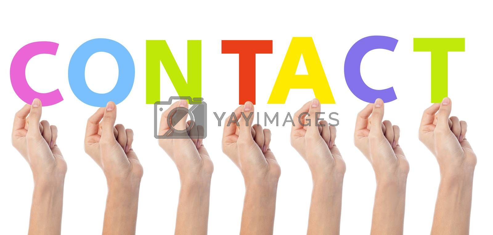 Female hand holding colorful words contact
