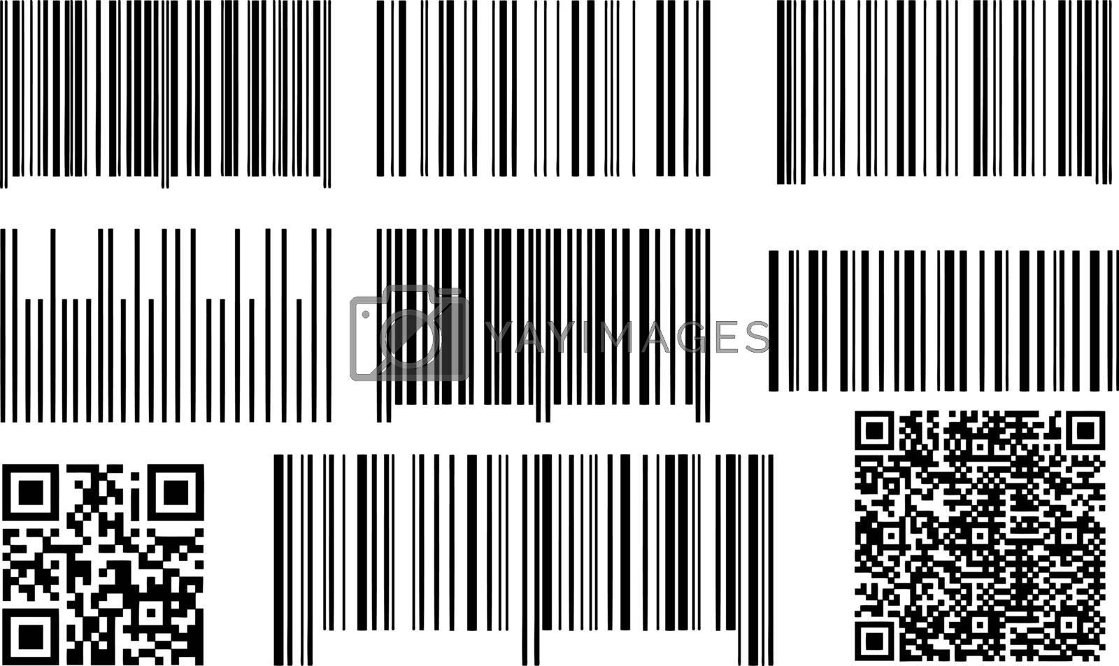 QR codes and bar codes