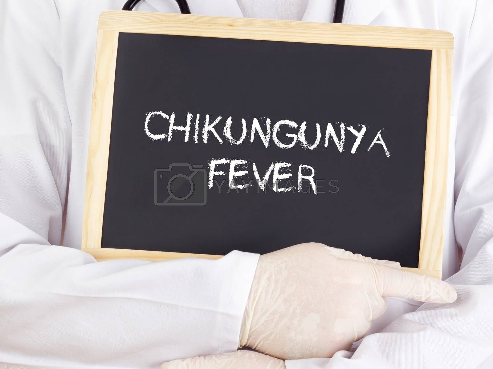 Doctor shows information on blackboard: Chikungunya fever