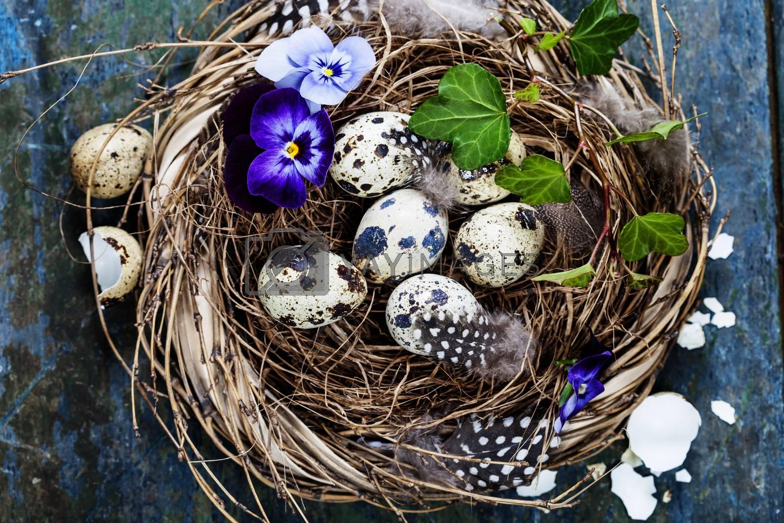 Easter by klenova