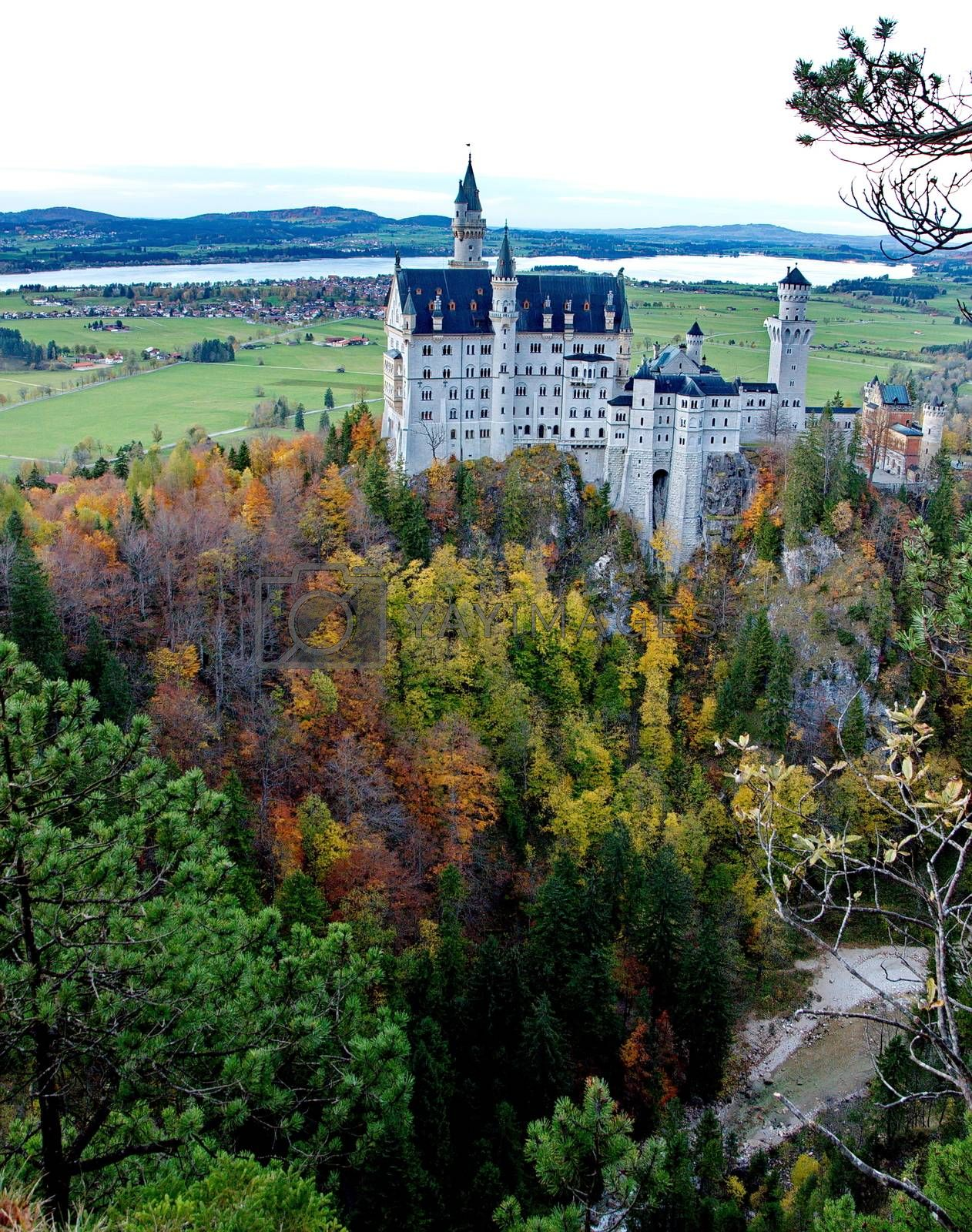 Royalty free image of Castle of Neuschwanstein near Munich in Germany on an autumn day by anderm