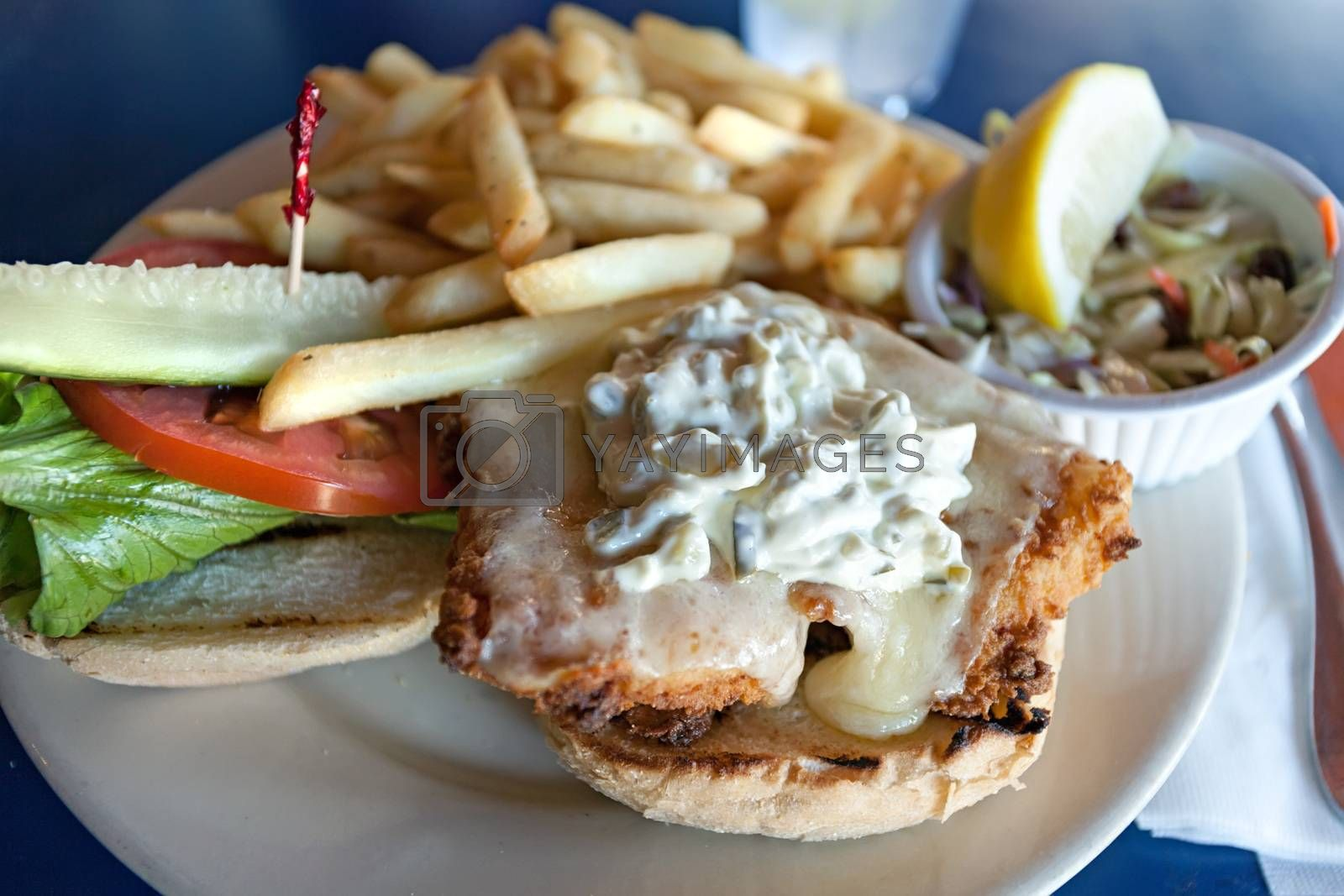 Fried fish sandwich with tartar sauce and french fries.