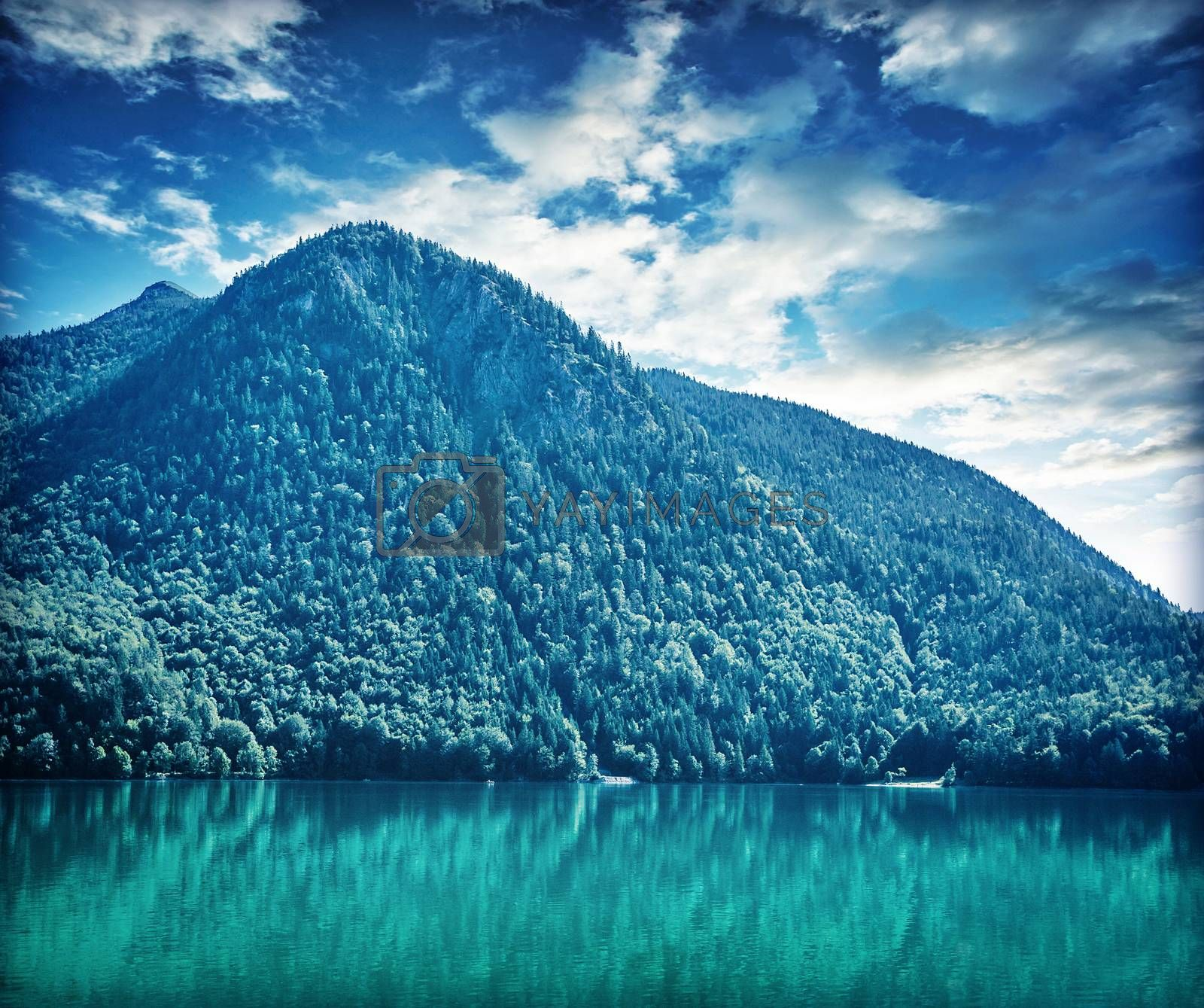 Beautiful landscape of great mountain covered with thick pine forest over lake, amazing panoramic scene of Alps, Austria, Europe