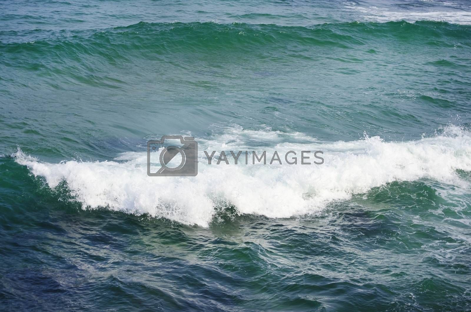 Photo of the Wavy Sea Blue Background