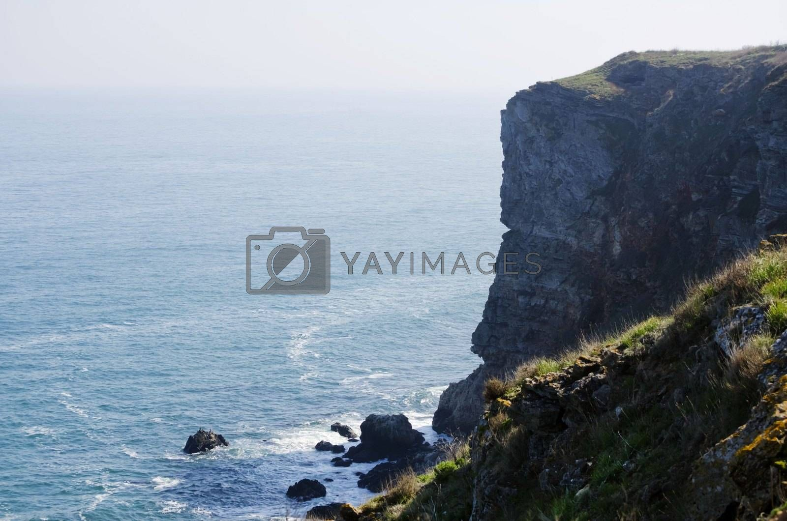Photo of the Black Sea Landscaping View