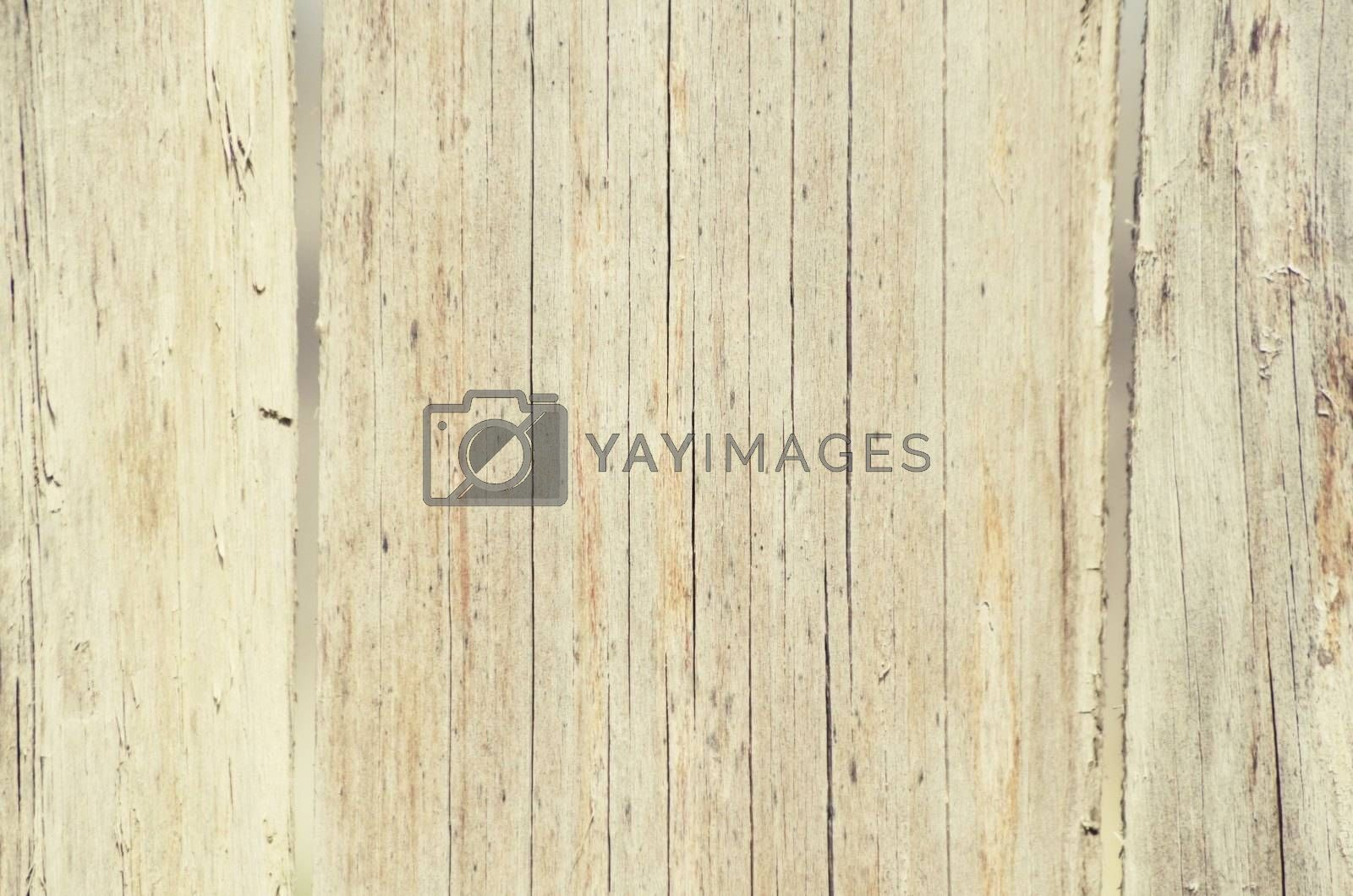 Wooden Background by razvodovska