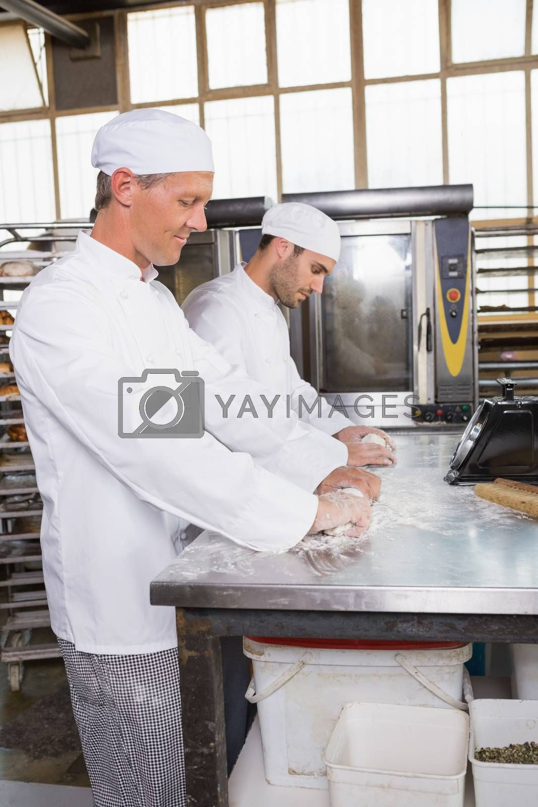 Focused bakers kneading dough at counter in the kitchen of the bakery