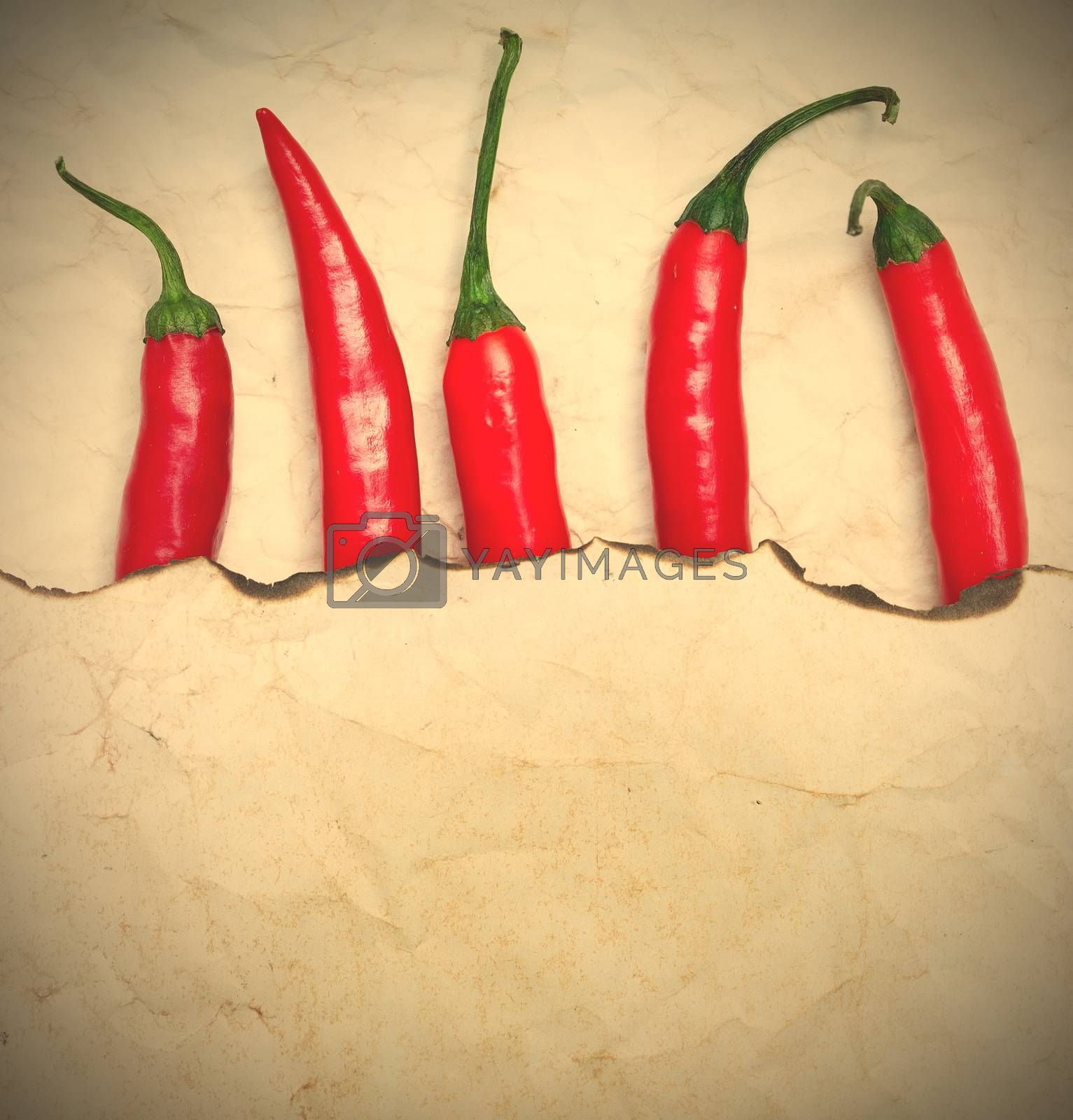 Royalty free image of fiery red chili peppers by Astroid