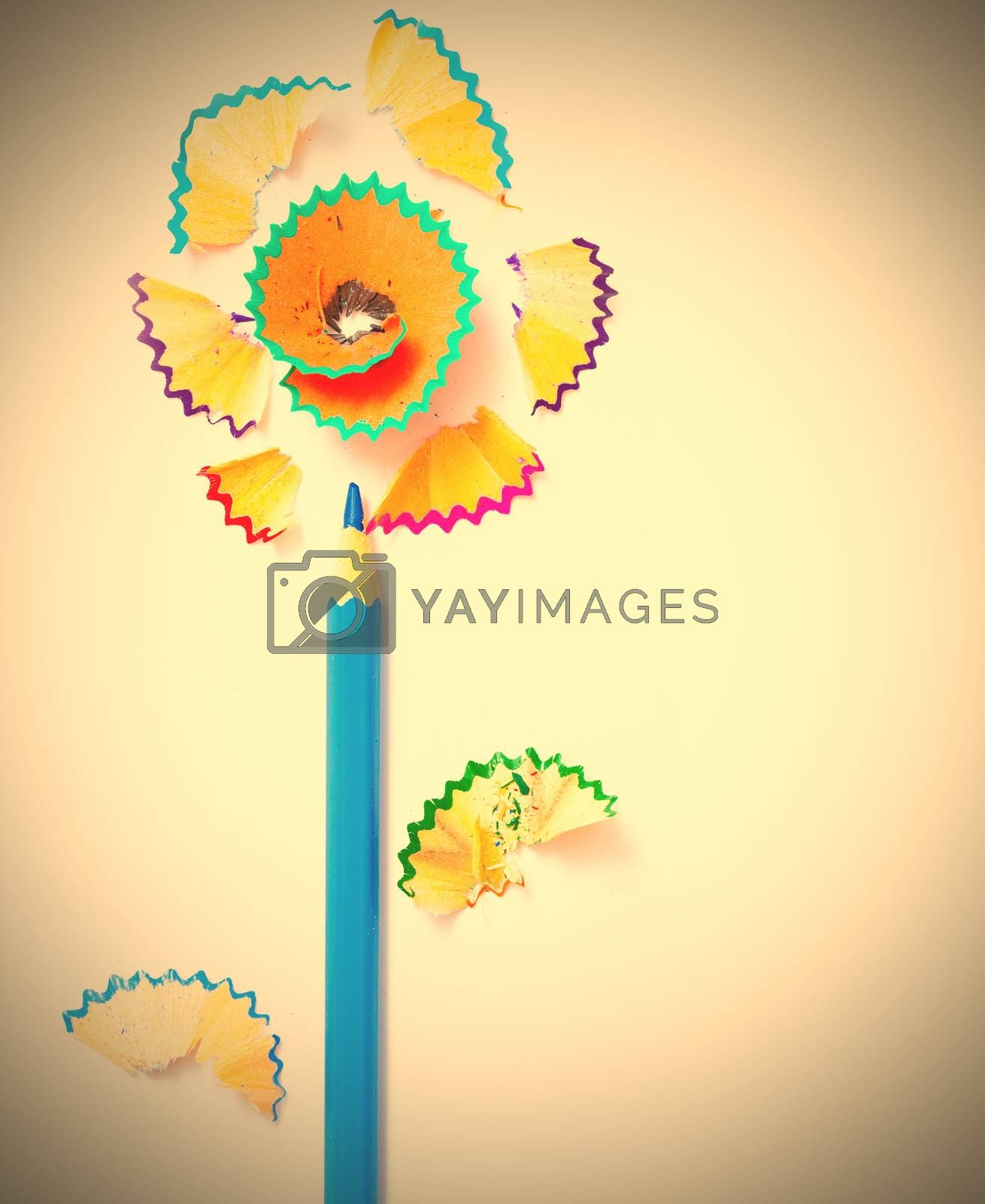 art flower from blue pencil and colored shavings on white background. instagram image retro style