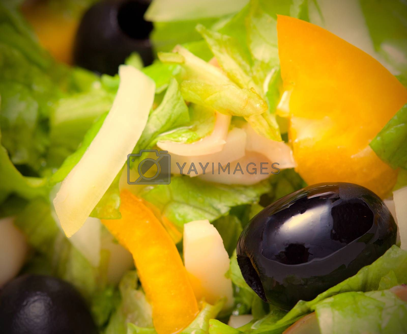 Royalty free image of Assorted salad of green leaf lettuce with squid and black olives by Astroid