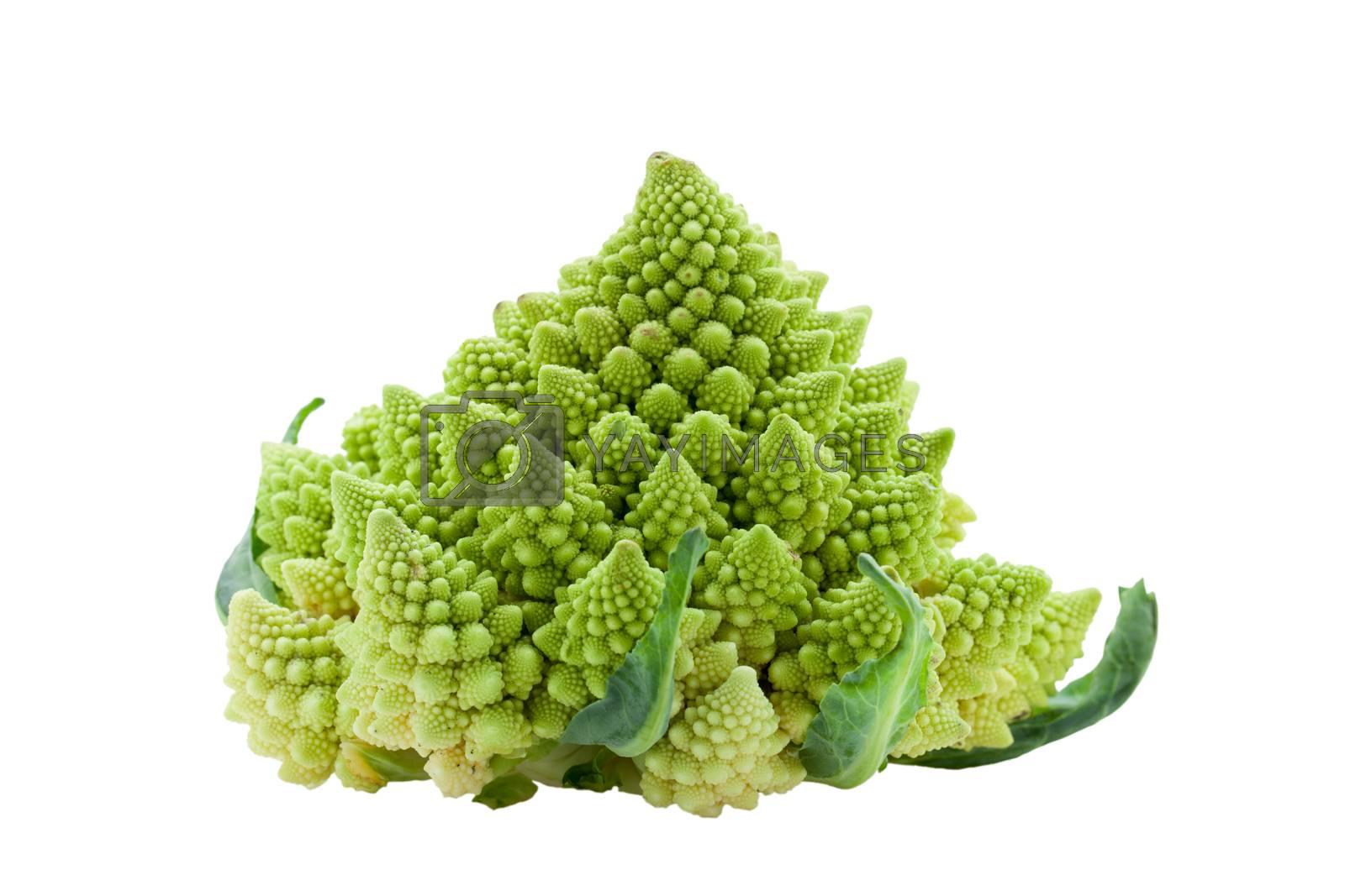 Royalty free image of Ripe vegetable romanesco broccoli or cauliflower cabbage isolate by SergeyAK