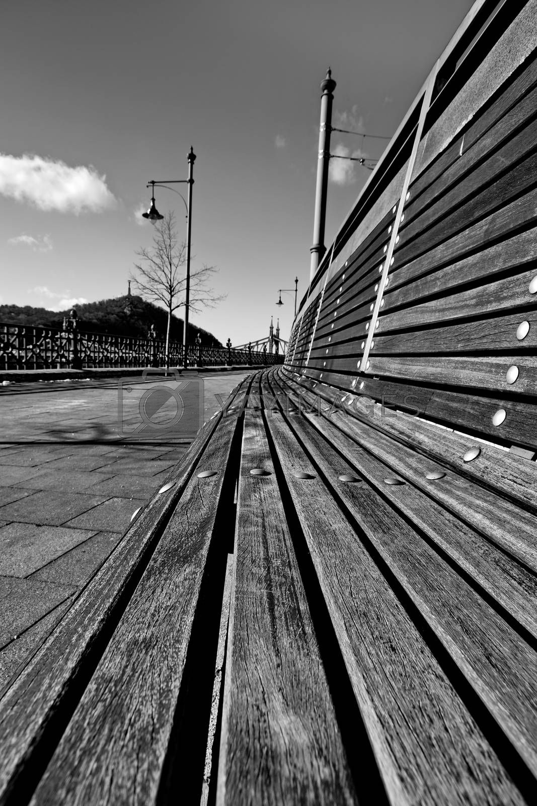 Empty bench in the city