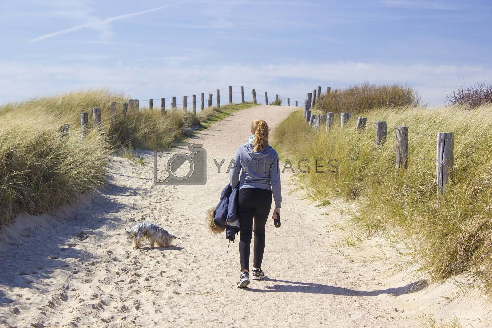 Walking with the dog in the dunes, Zoutelande, Netherlands by miradrozdowski