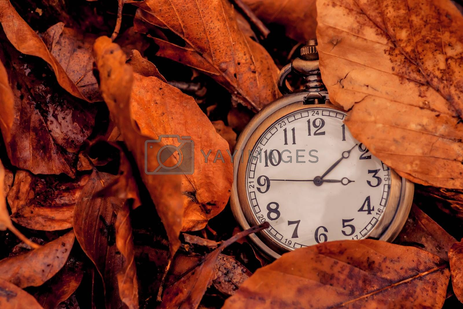 Clock showing that autumn is coming