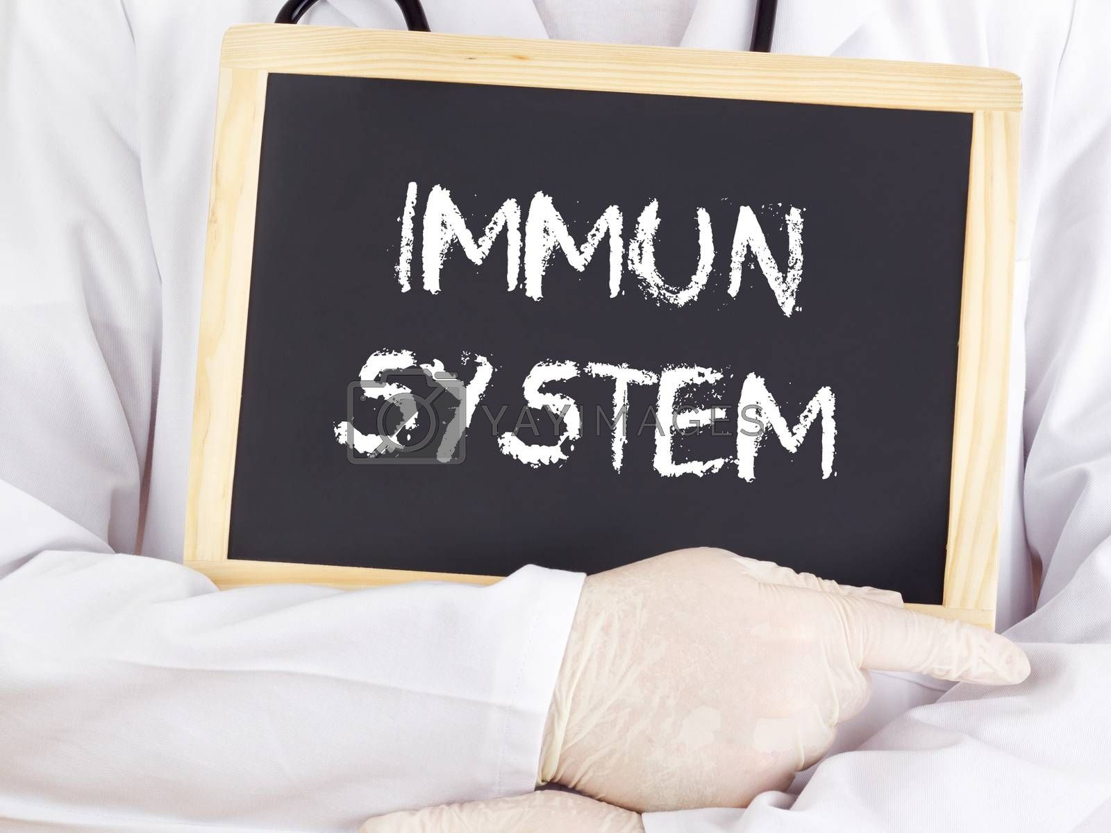 Doctor shows information: immune system in german