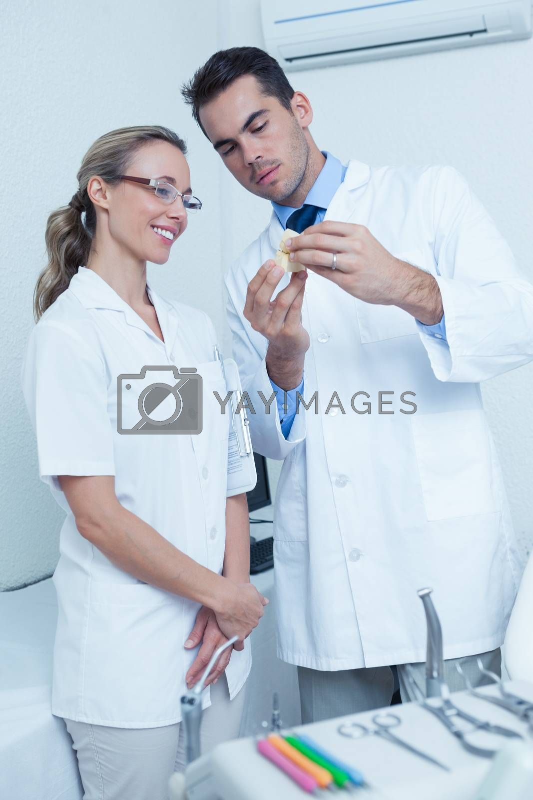 Male dentist and assistant looking at mouth model