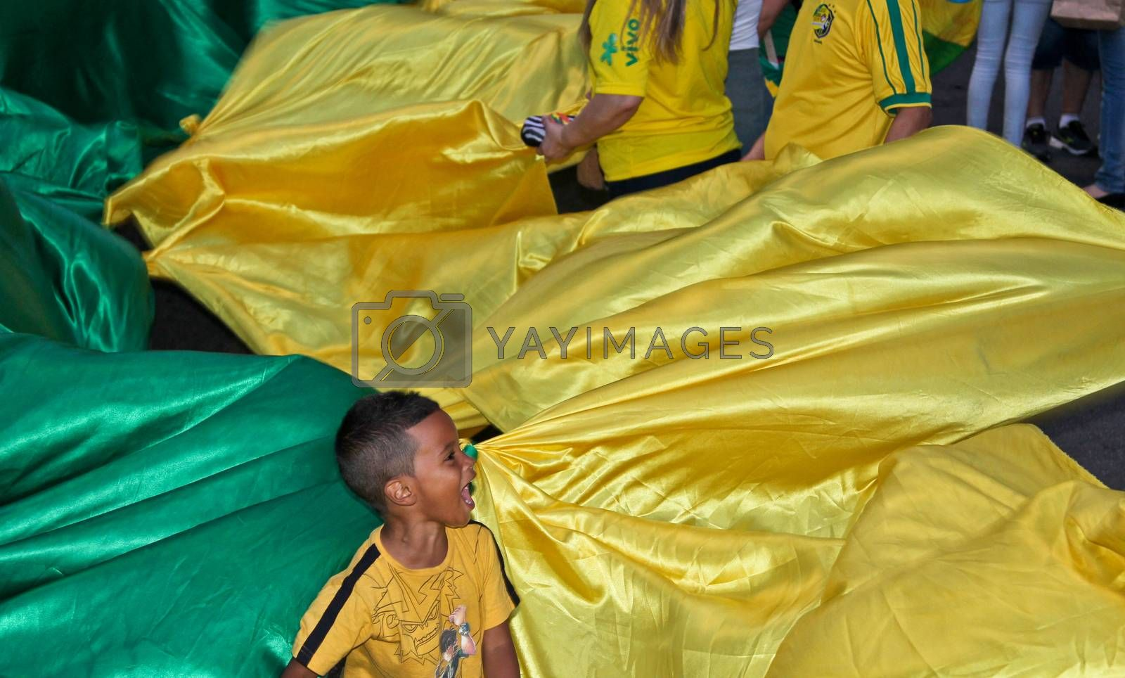 SAO PAULO, BRAZIL - APRIL 12, 2015: One unidentified boy in the middle of brazilian flag at protest against federal government corruption in Sao Paulo Brazil. Protesters call for the impeachment of President Dilma Rousseff.