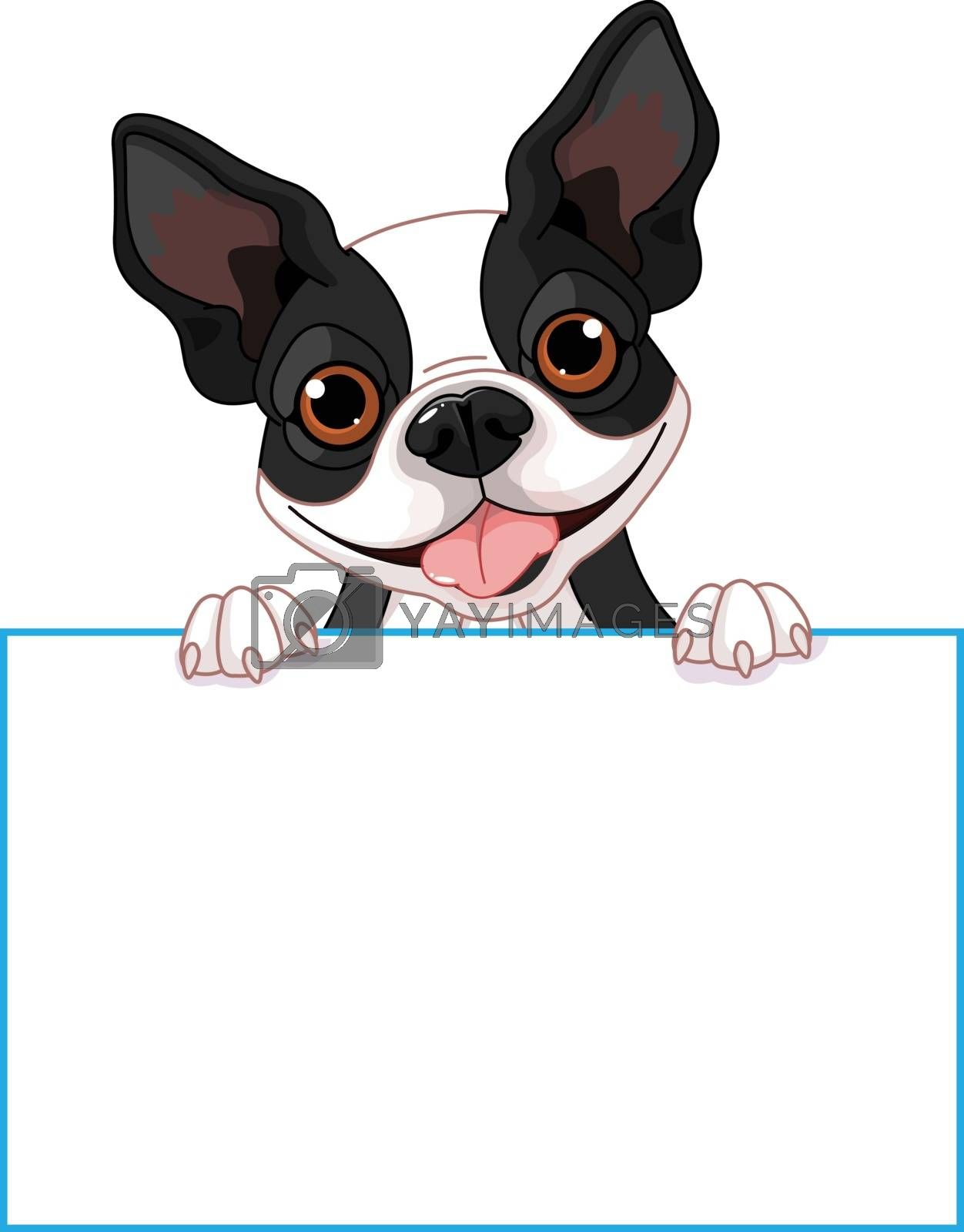 Royalty free image of Boston terrier sign by Dazdraperma
