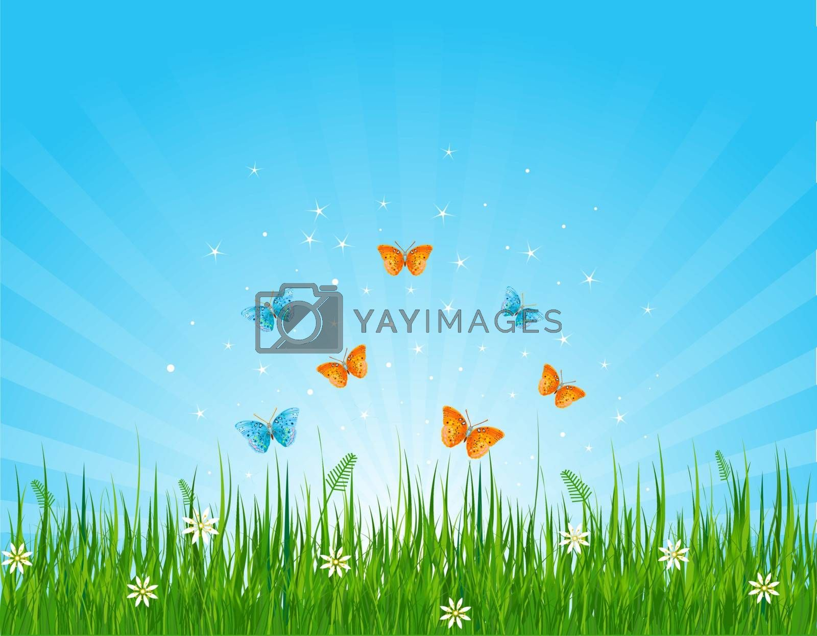Royalty free image of Grassy field and butterflies by Dazdraperma