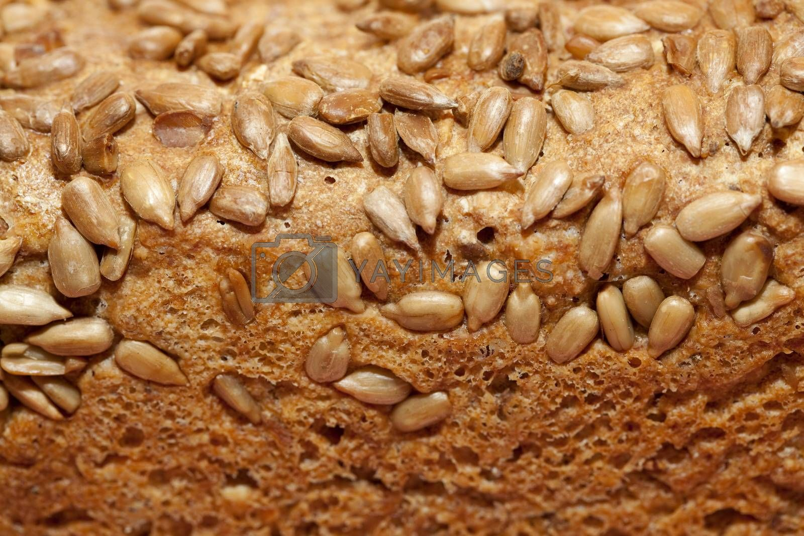 whole brown bread with sunflower seed as background