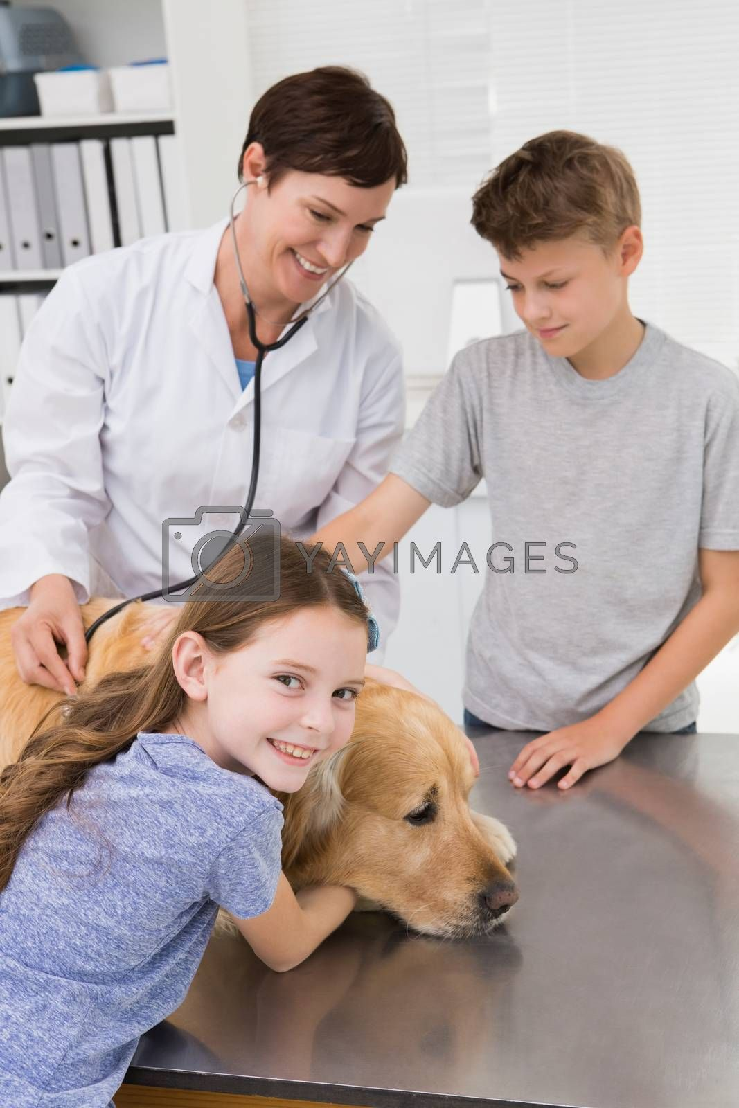 Smiling vet examining a dog with its owners by Wavebreakmedia