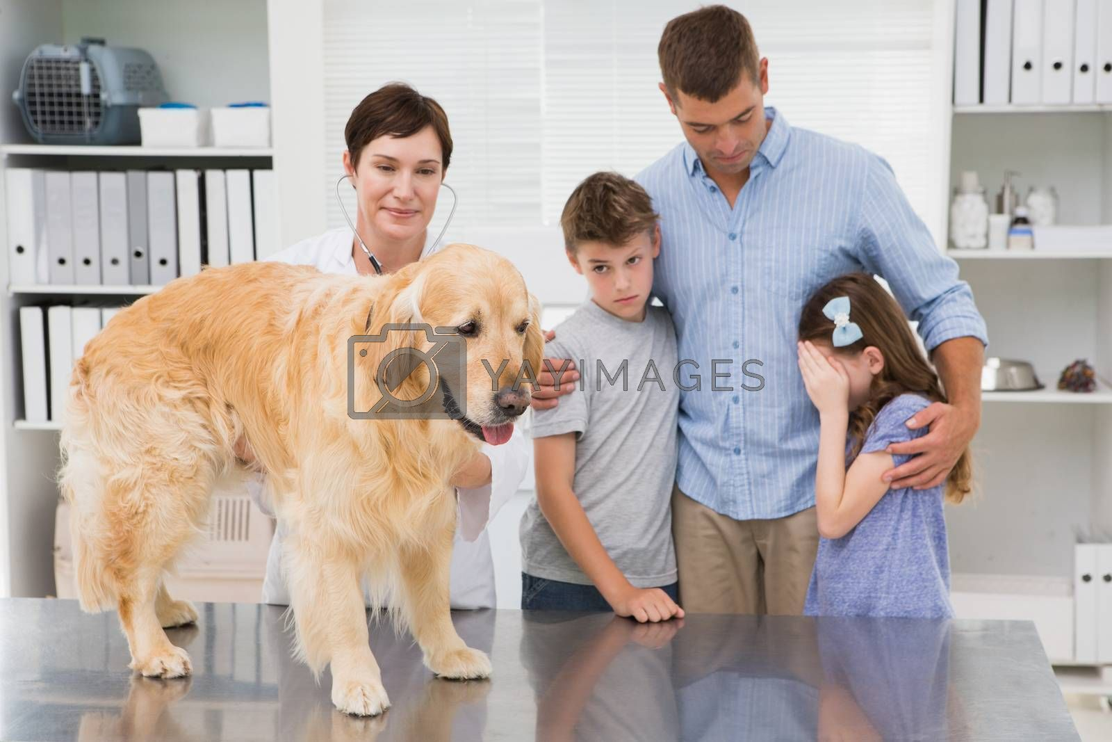 Smiling vet examining a dog with its scared owners in medical office