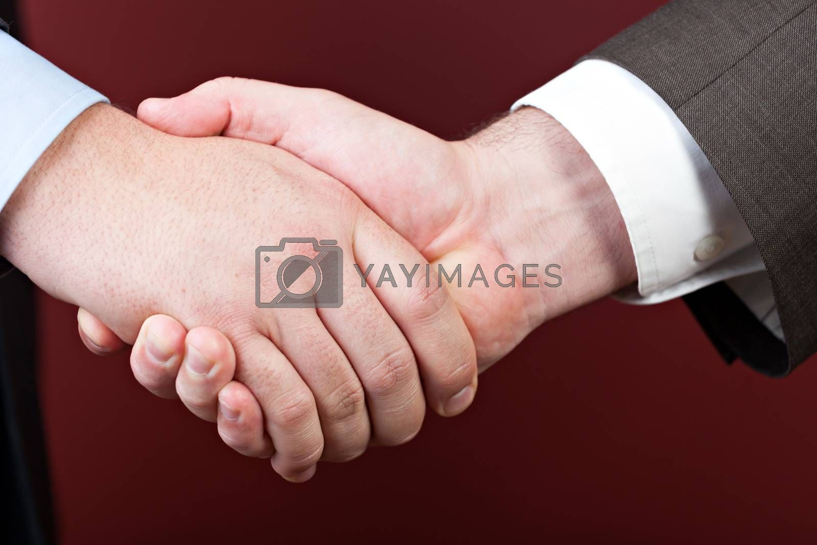 Business negotiations illustrated with a close up of a handshake between two men.
