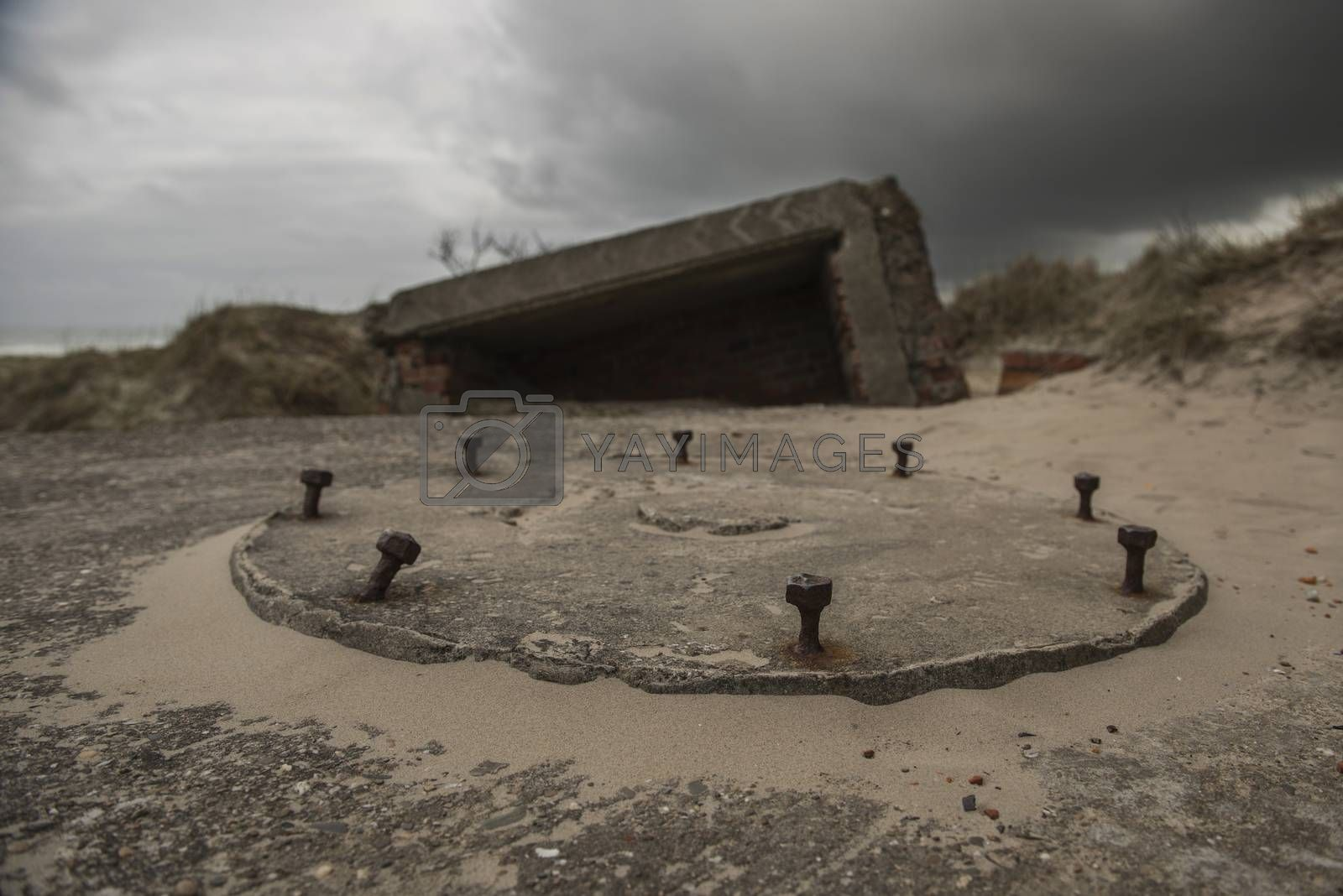 Old German bunker on the island Terschelling in the Netherlands